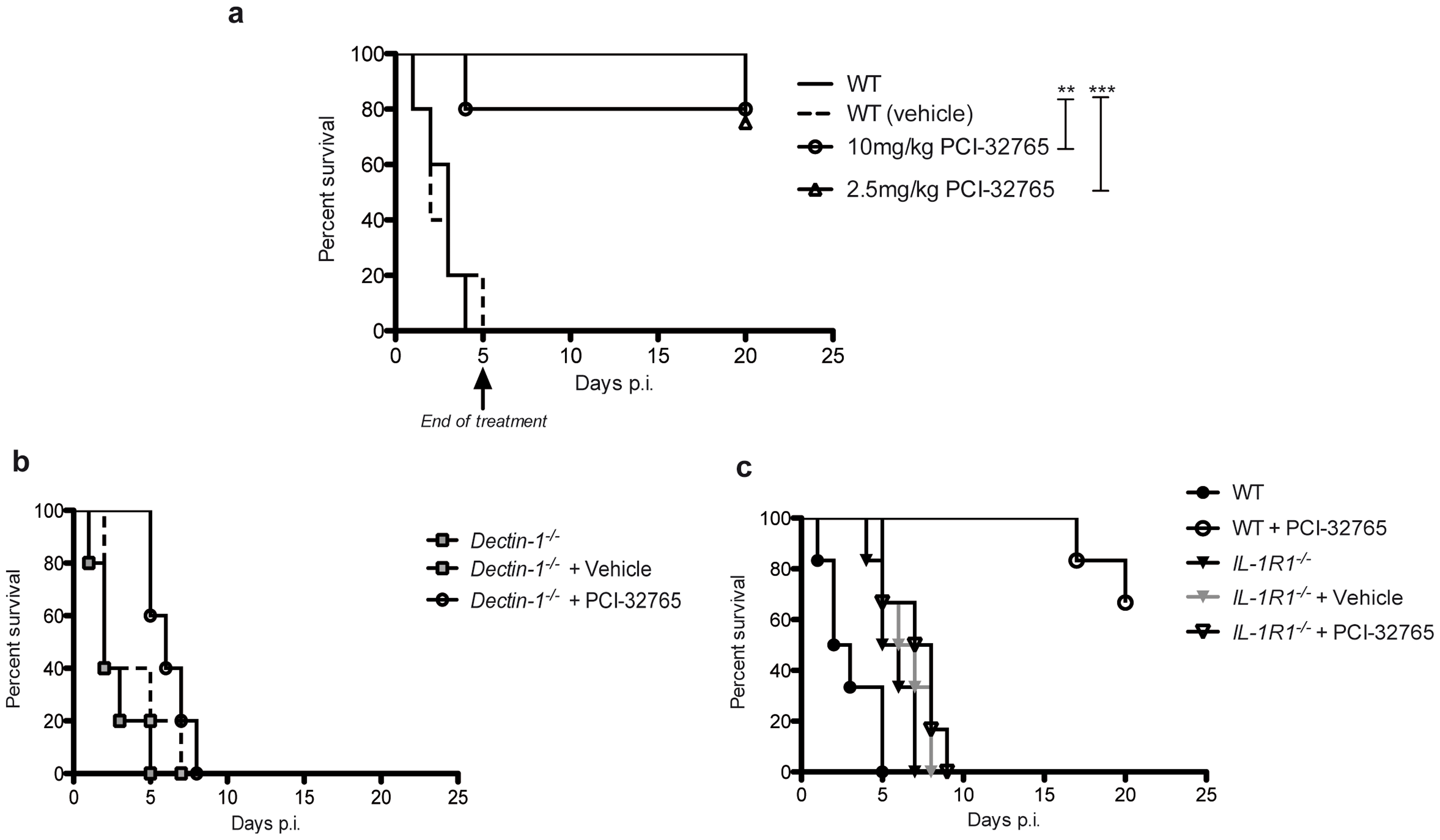 Chemical-genetic inhibition of Tec rescues mice from fatal fungal sepsis.