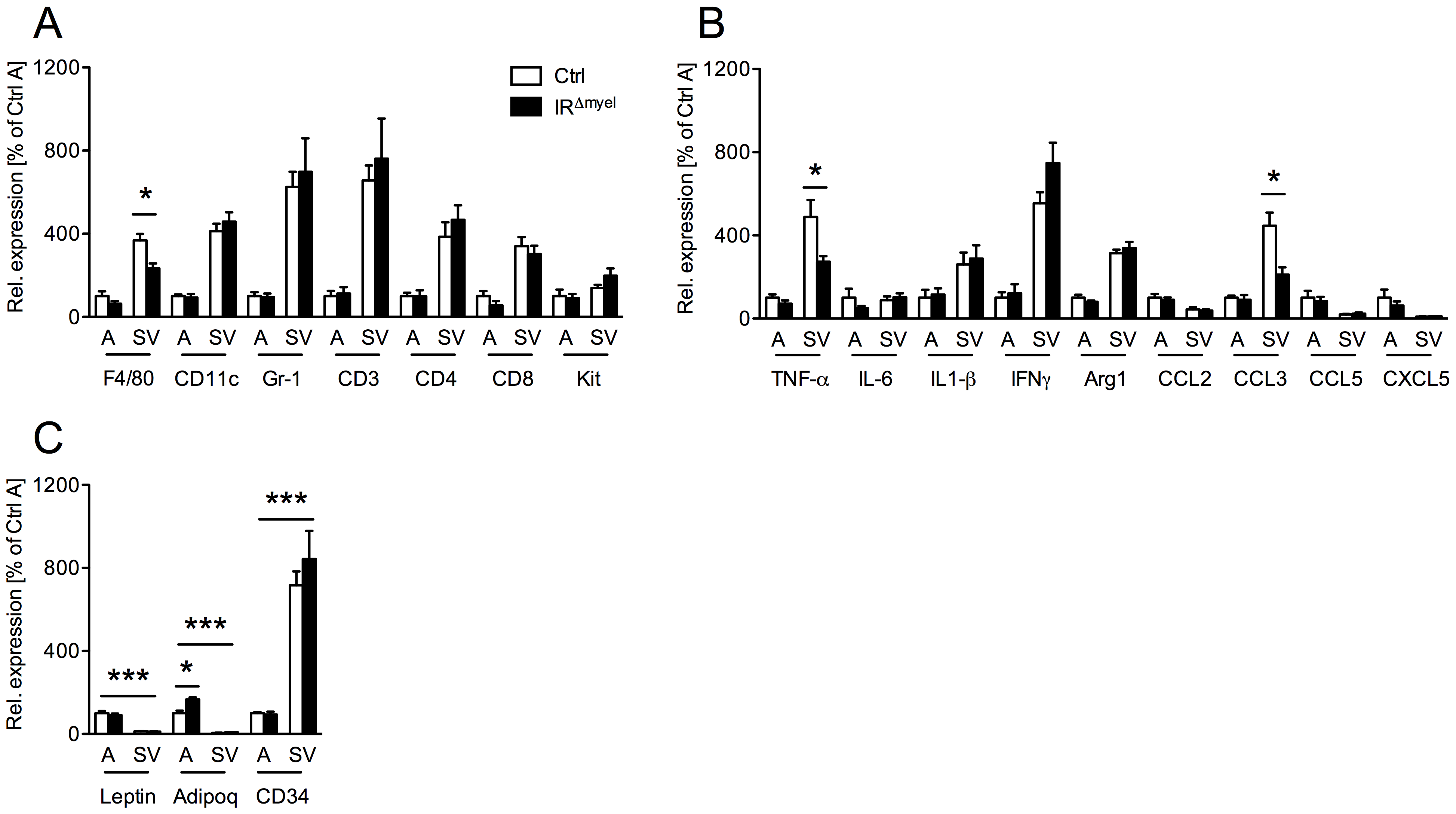 Obese IR<sup>Δmyel</sup>-mice exhibit reduced macrophage marker and pro-inflammatory gene expression in stromal vascular cells of the adipose tissue.