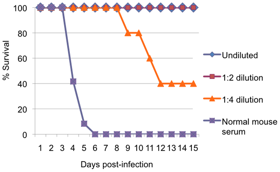 Protection of mice with passive transfer of immune serum.