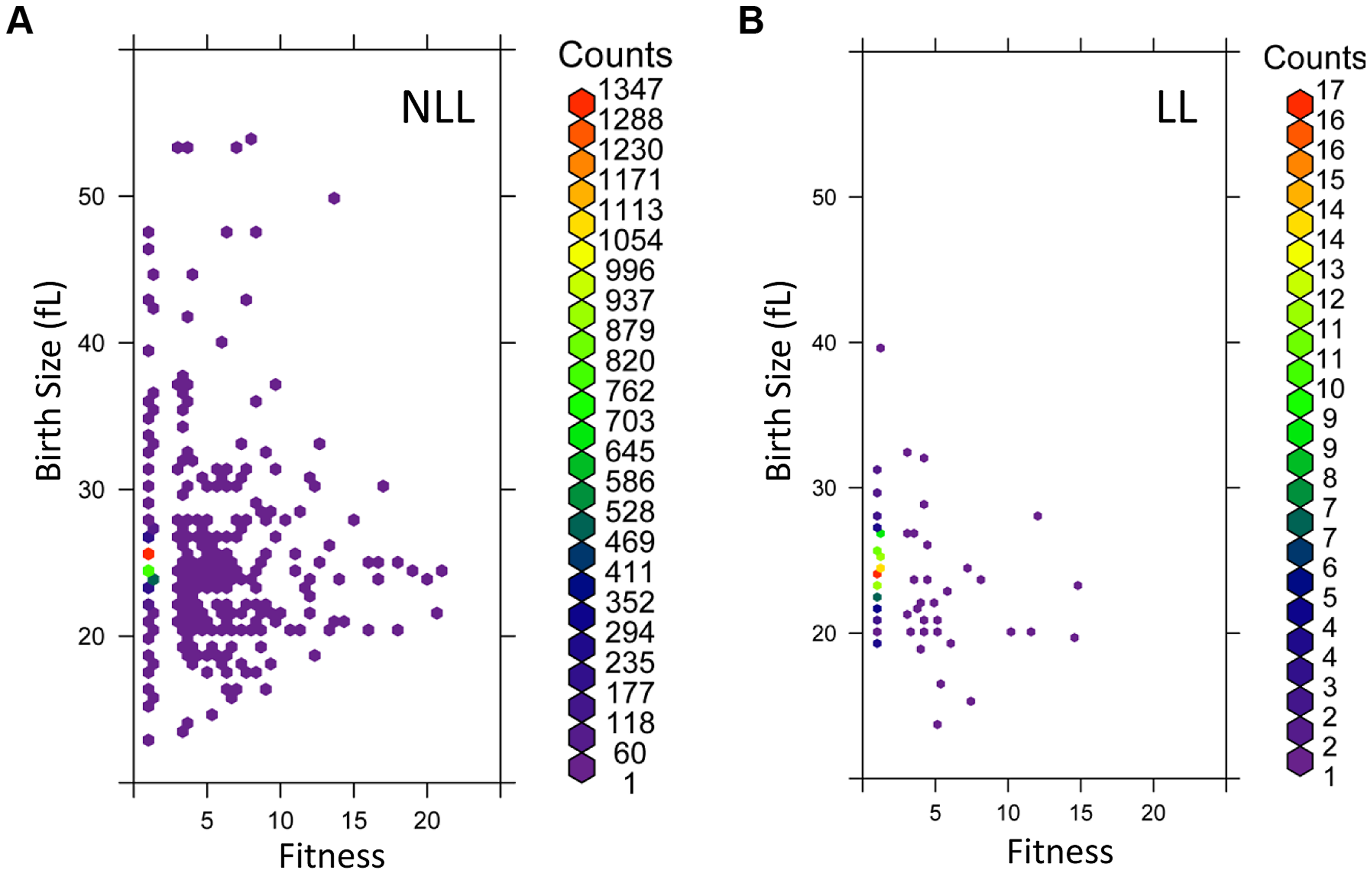 LL mutant birth size and fitness are more constrained than those of NLL mutants.