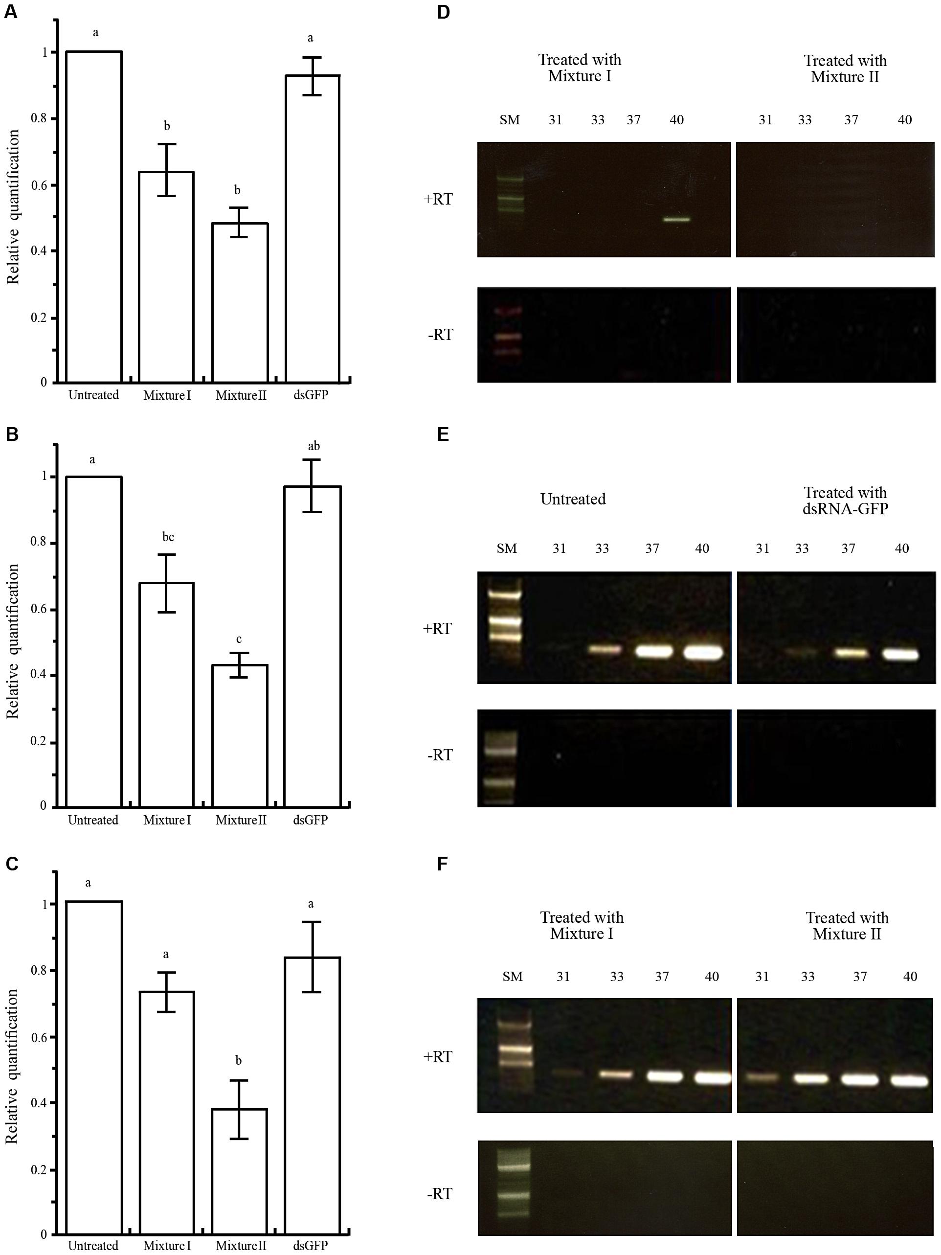 Silencing of <i>Varroa</i> gene expression following horizontal transfer of dsRNA from bee to <i>Varroa</i>.