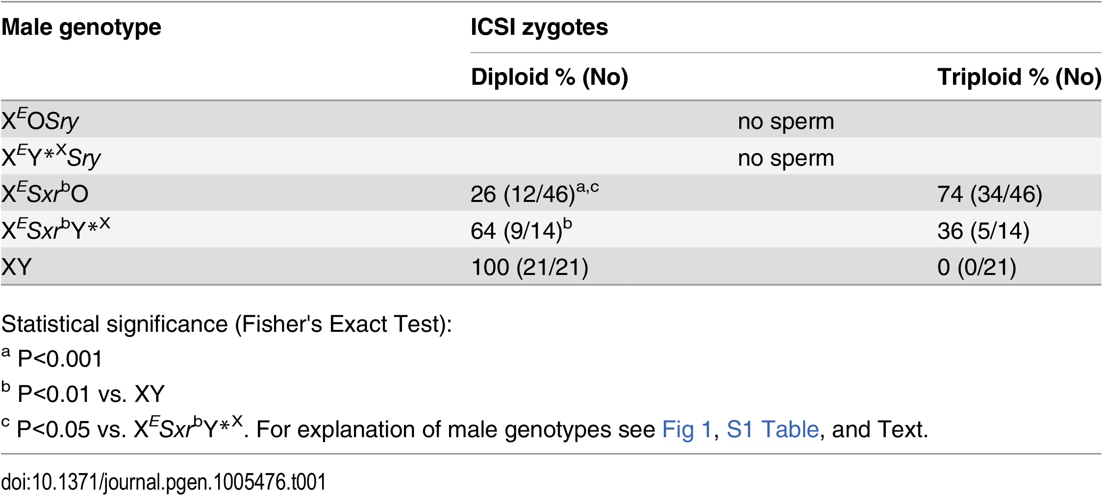 Zygotic chromosome analysis after ICSI with sperm from X<sup><i>E</i></sup><i>Sxr</i><sup>b</sup>O and X<sup><i>E</i></sup><i>Sxr</i><sup><i>b</i></sup>Y*<sup>X</sup> males.