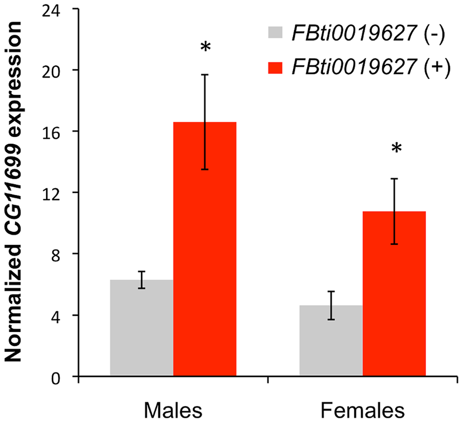 Flies with <i>FBti0019627</i> insertion show increased <i>CG11699</i> expression.