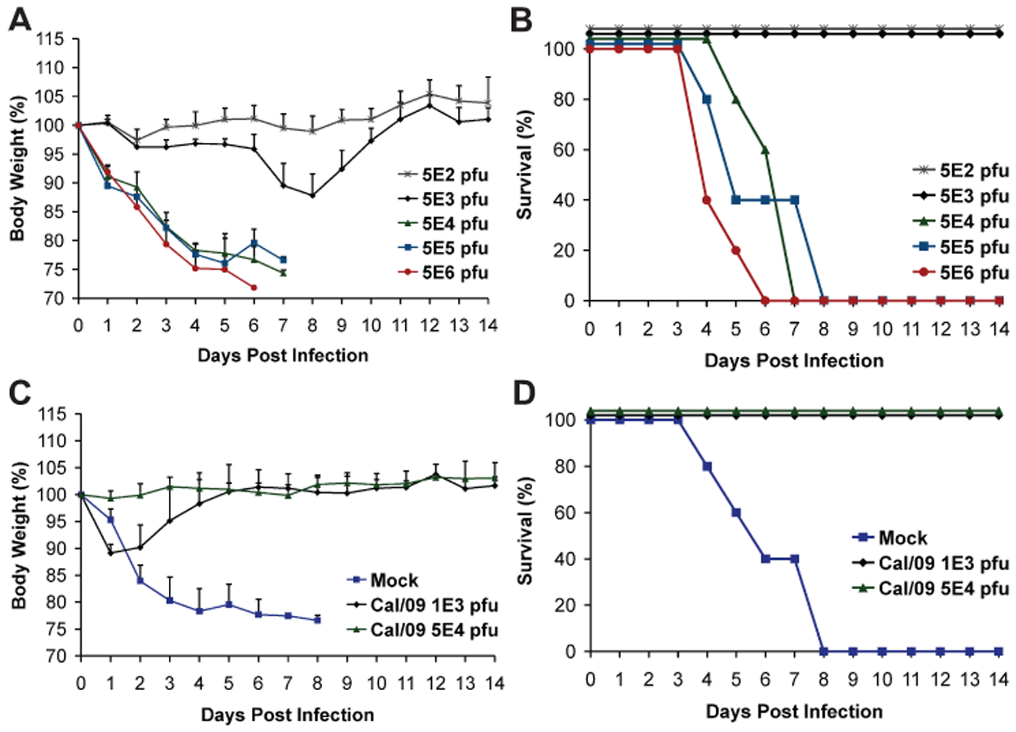Prior infection with Cal/09 virus cross-protects mice against the lethal challenge with Neth/09 isolate.