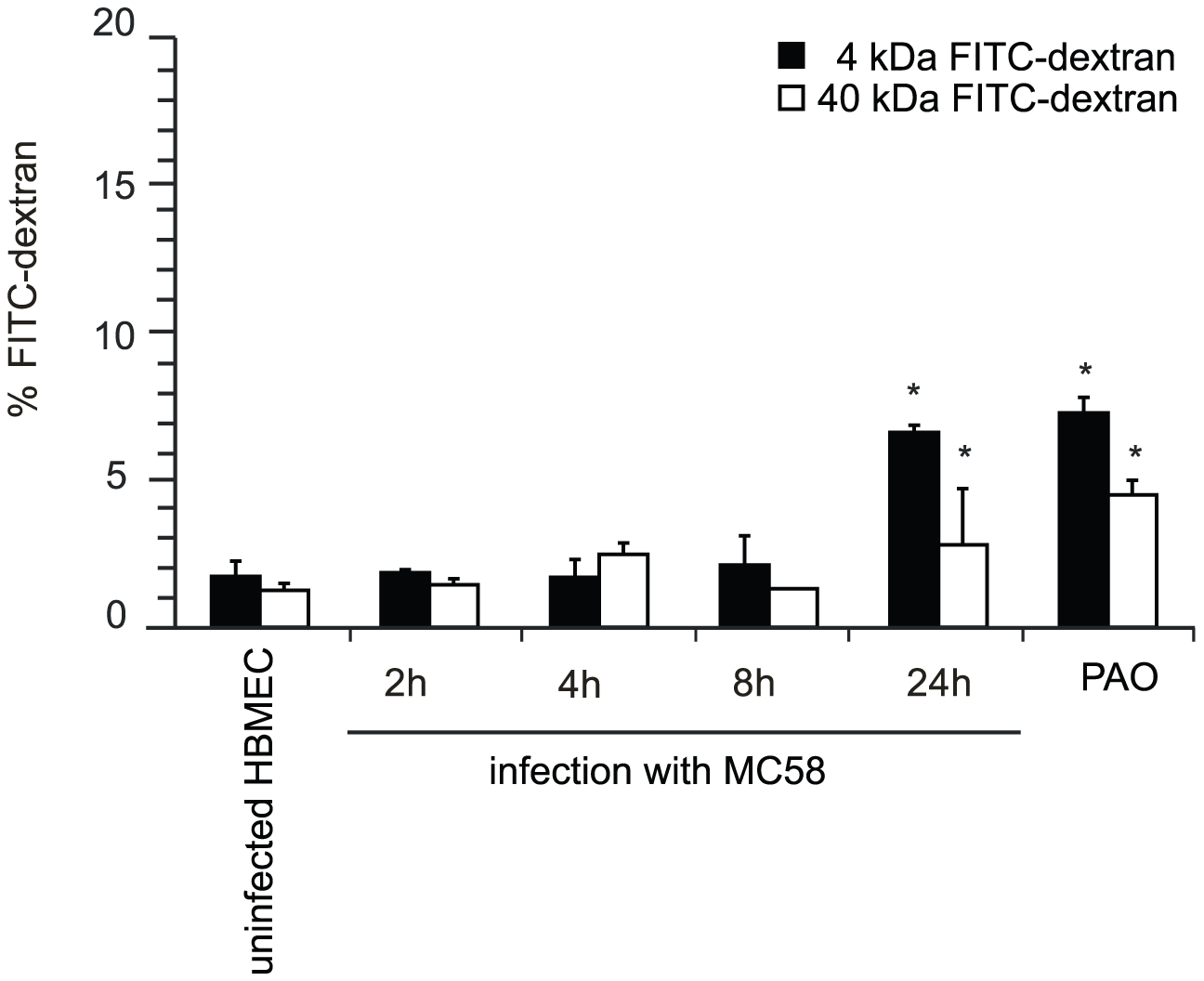 <i>N. meningitidis</i> infection alters the paracellular permeability of HBMEC.