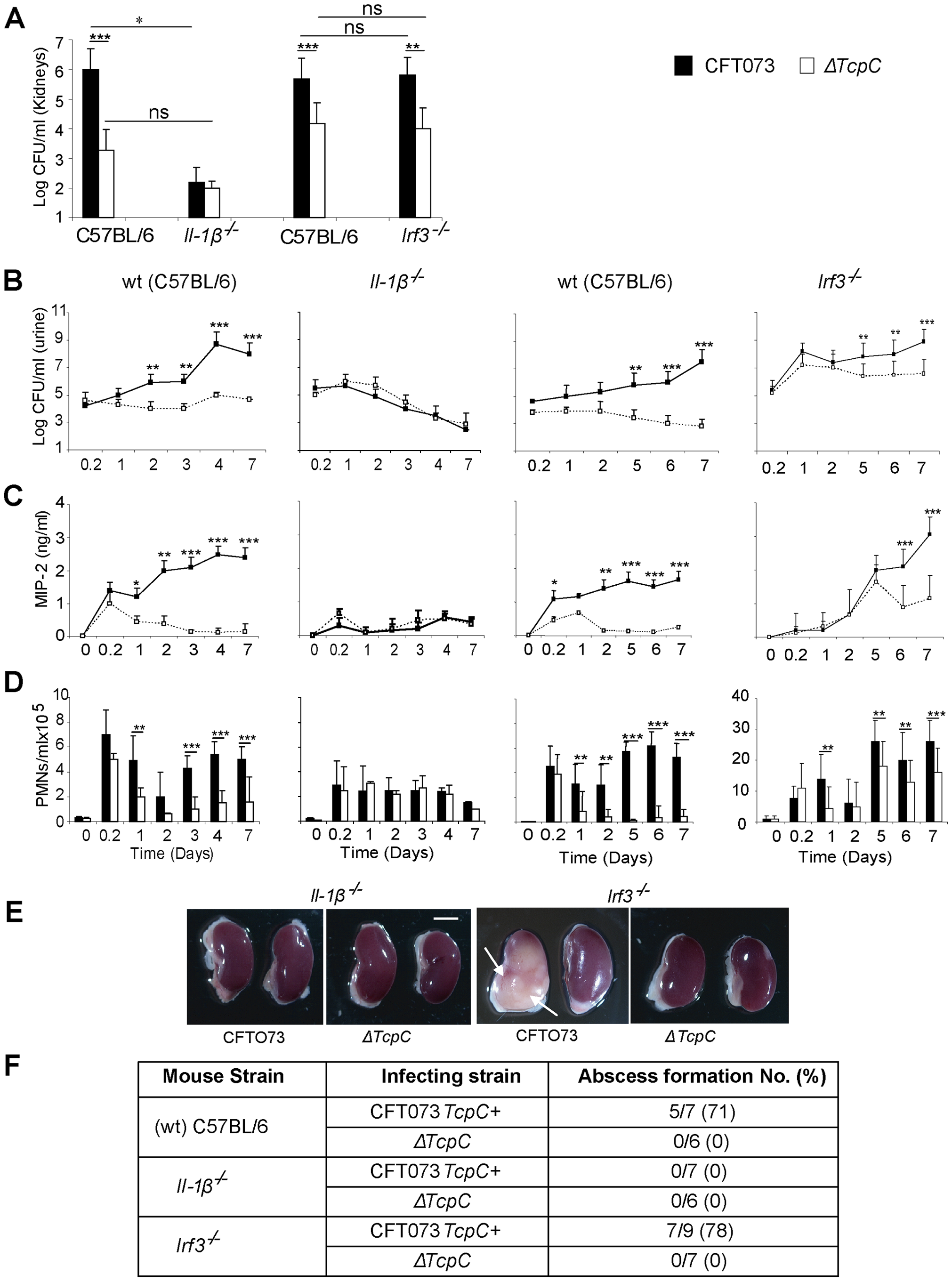 Effects of TcpC virulence in <i>Il-1β<sup>−/−</sup> and <b><i>Irf3<sup>−/−</sup></i></b> mice infected with CFT073 or Δ</i><i>TcpC</i>.