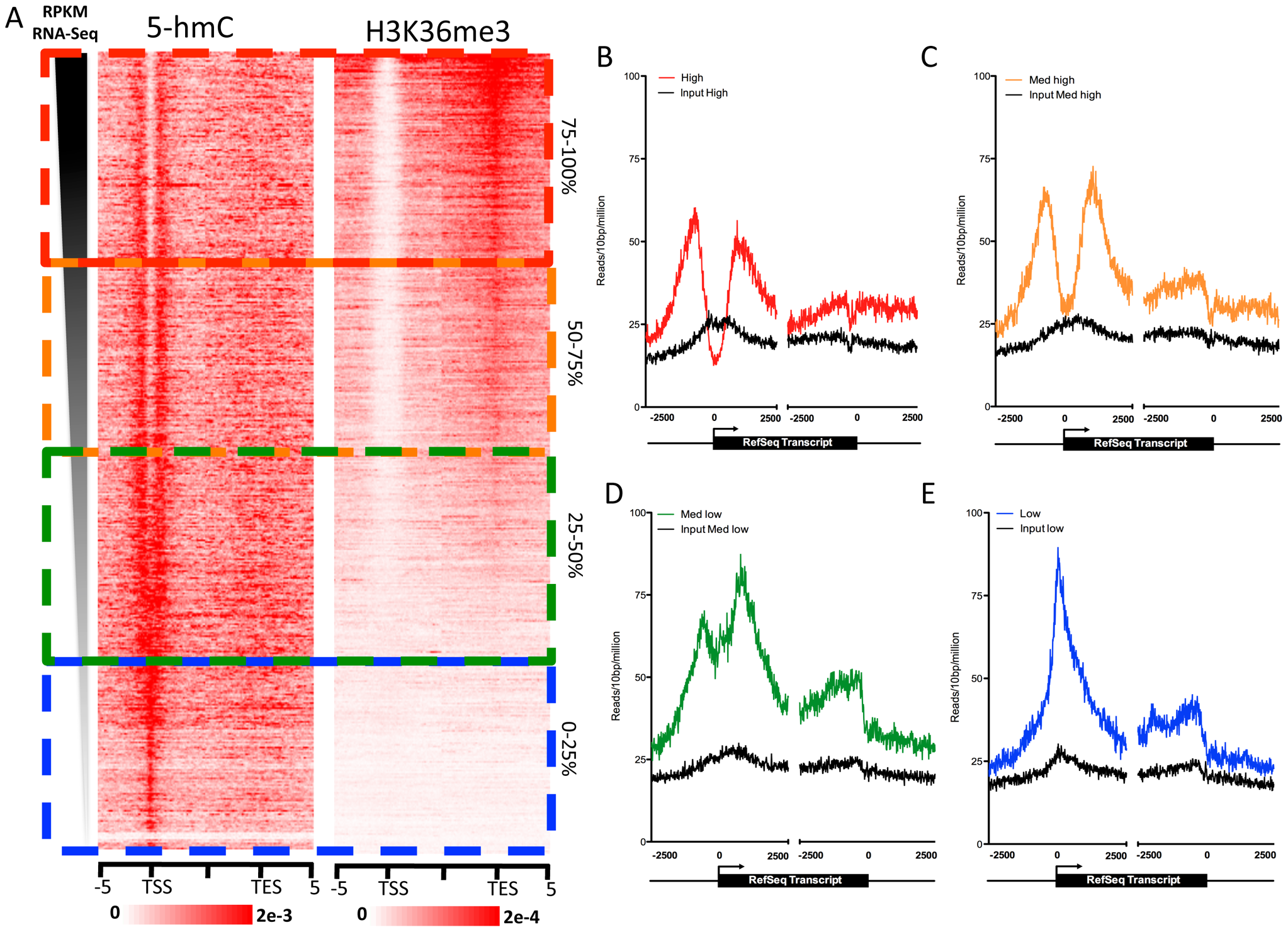 Gene expression level-dependent 5-hmC and H3K36me3 distributions in human ES cells.