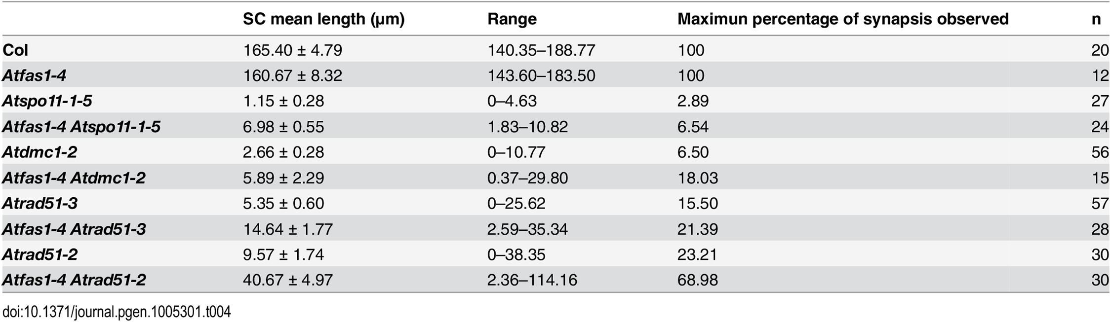 Comparison of SC lengths among different mutants.