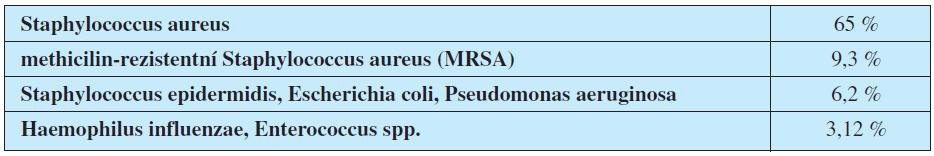 Nejčastější bakteriální původci spondylodiscitid