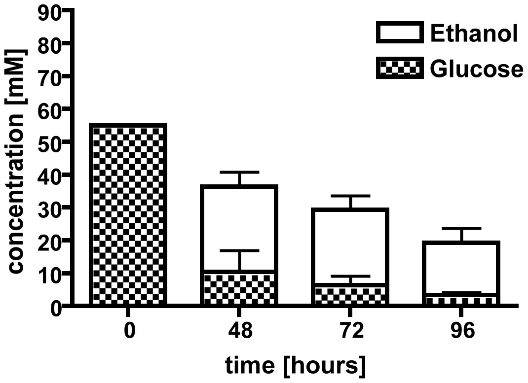 Culture supernatants were used in a high performance liquid chromatography (HPLC) analysis to determine ethanol production and glucose consumption.