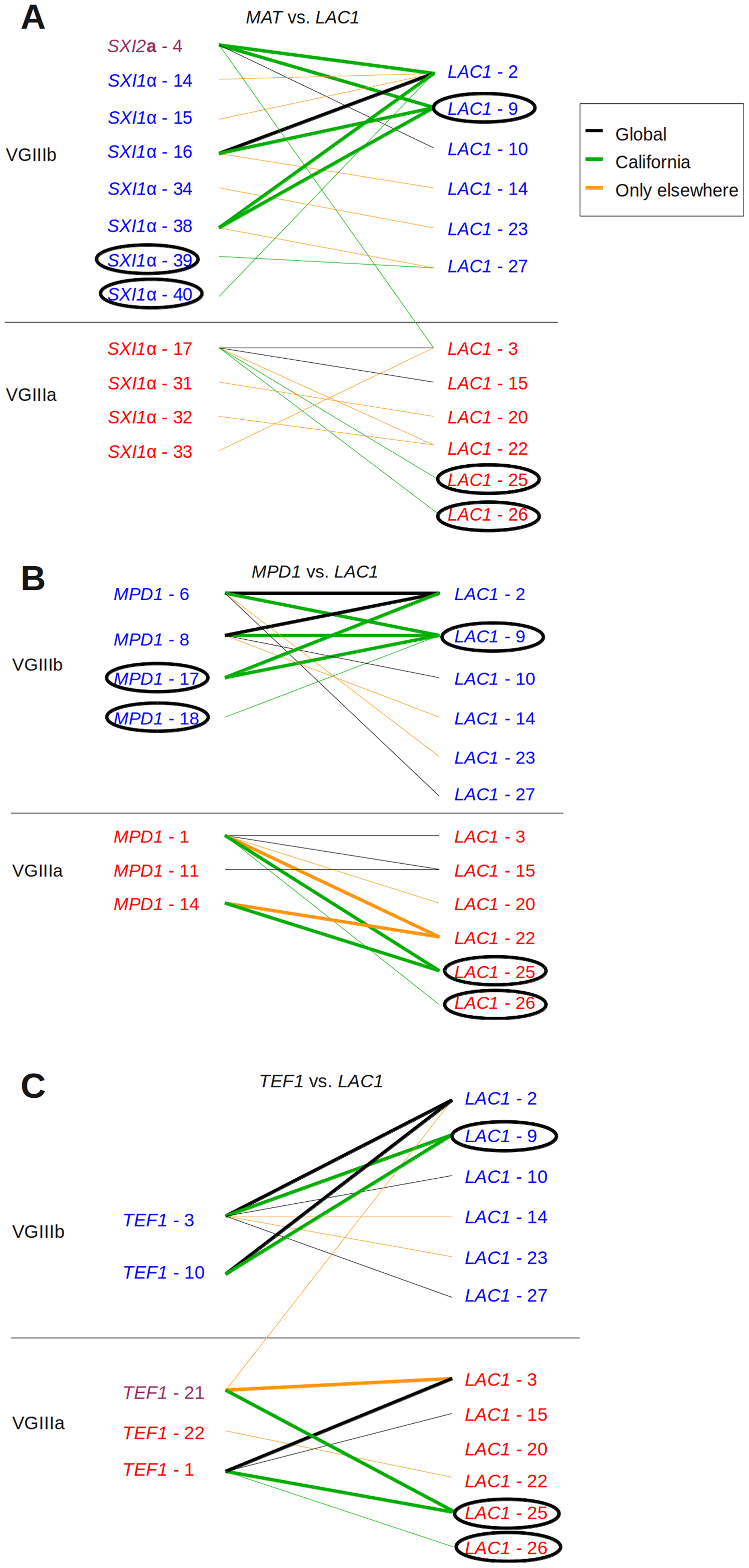 Evidence for recombination in Californian VGIII isolates.