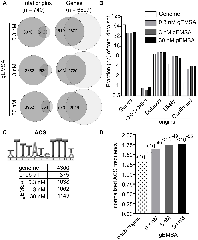 The genomic EMSA showed ORC-DNA selectivity.
