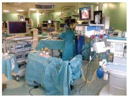 Pohled do místnosti s laparoskopickými stanicemi V popředí je jedna z celkem 17 stanic s prasetem uvedeným do anestezie. K dispozici je laparoskopická věž s plným vysokým rozlišením (1080 p) rozlišením a kompletním příslušenstvím. Každá stanice je vybavena dodatečným monitorem (vpravo nahoře), na kterém jsou průběžně promítány úkoly, tipy, triky a praktické informace nebo schémata. Fotografie byla pořízena mobilním telefonem.