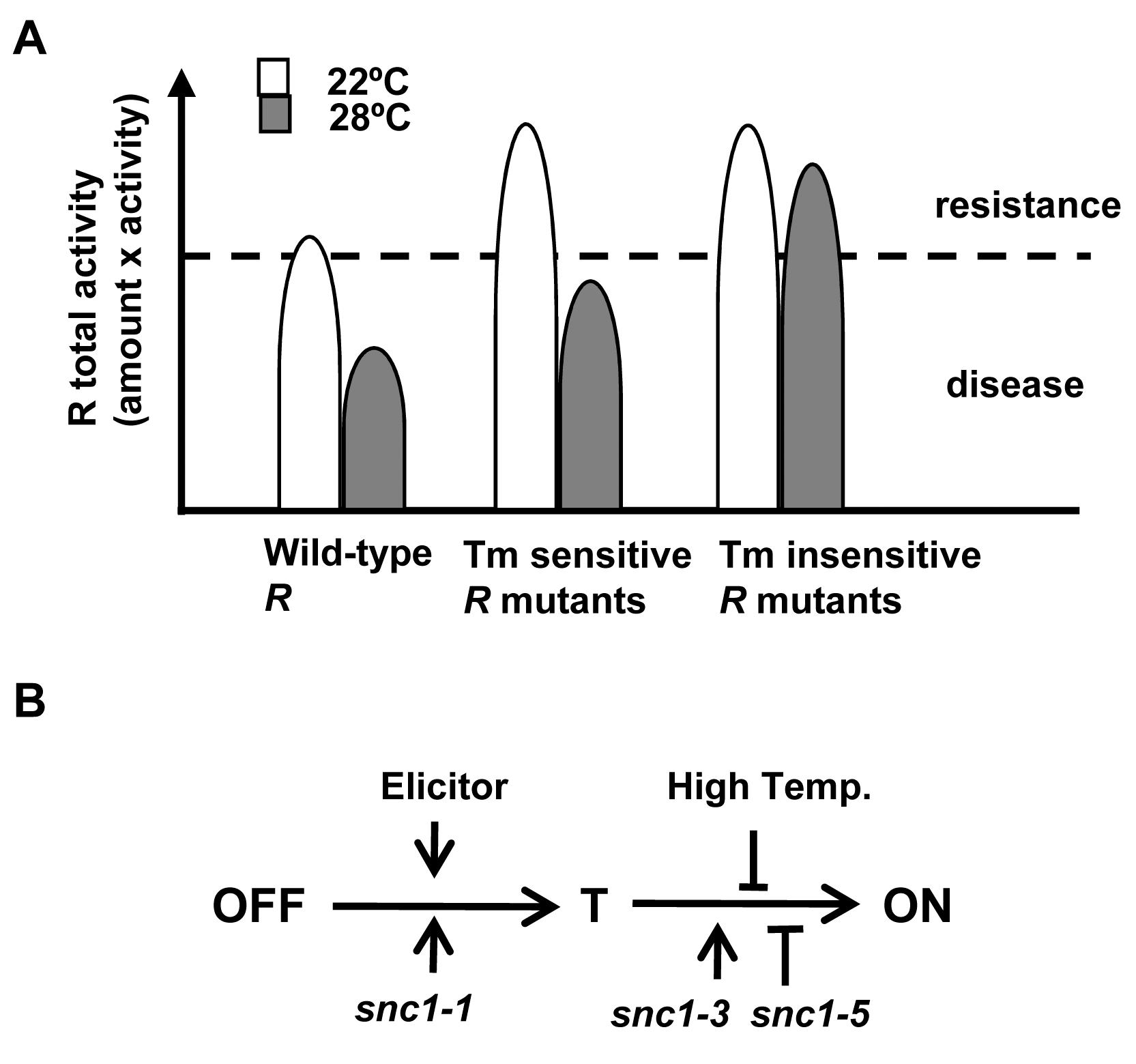 Model of temperature sensitivity of plant defense responses.