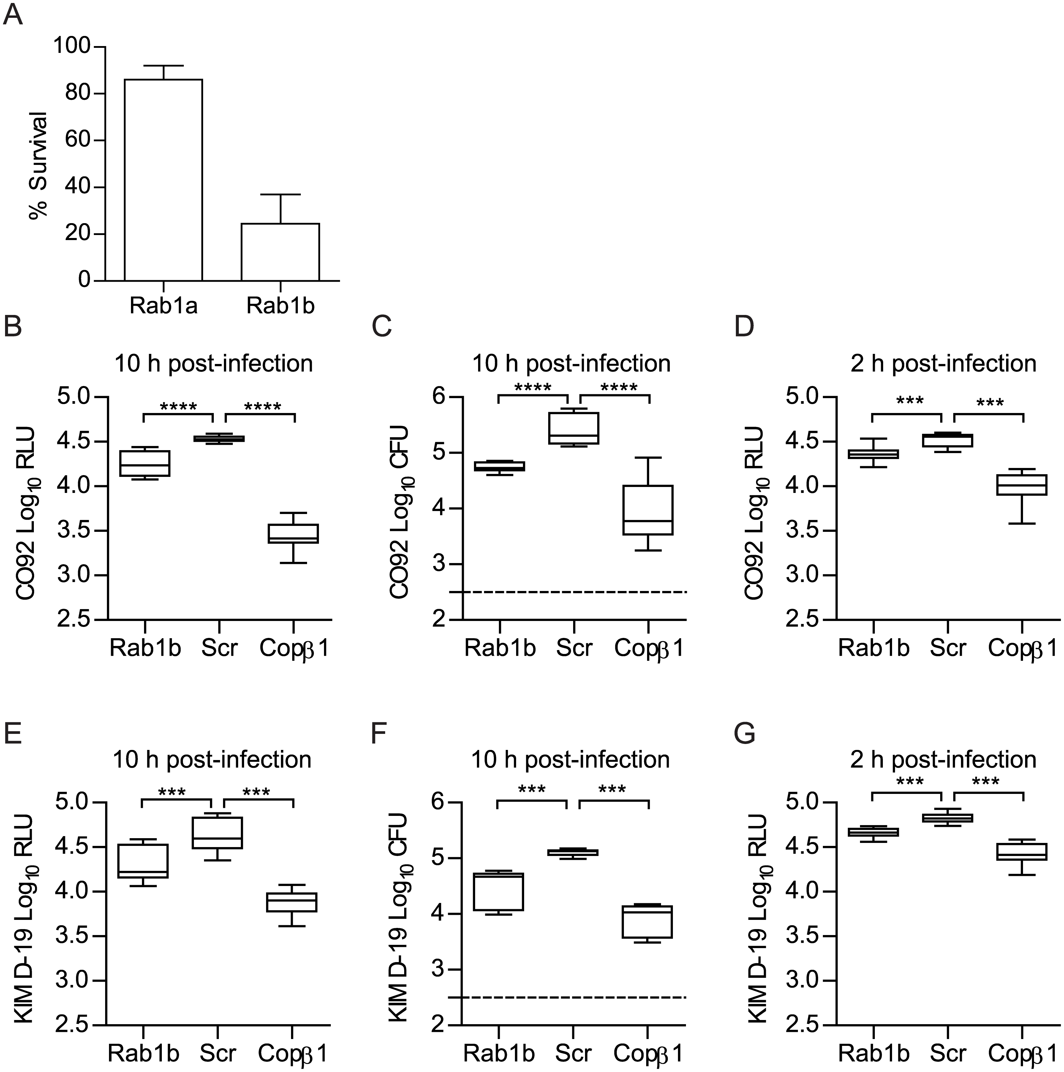 Rab1b knockdown inhibits the survival of <i>Y</i>. <i>pestis</i> within macrophages.