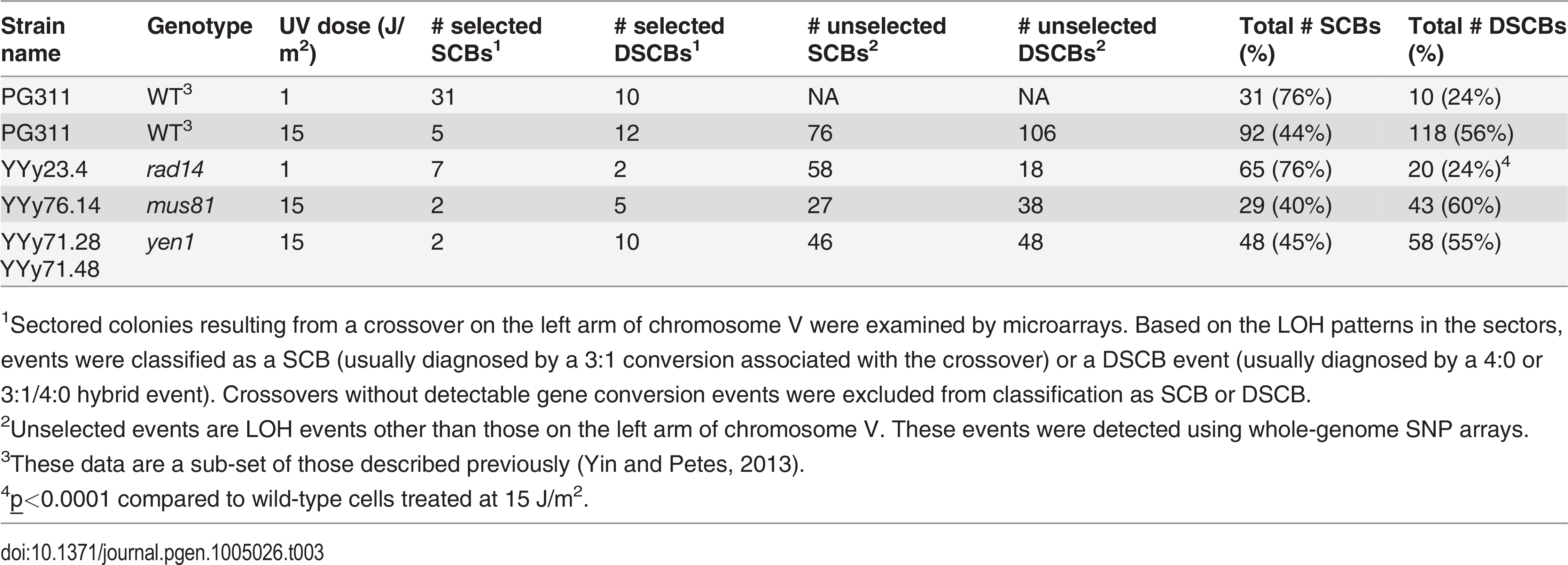 Numbers of single-chromatid breaks (SCBs) and double sister-chromatid breaks (DSCBs) induced by UV in G1-synchronized cells.