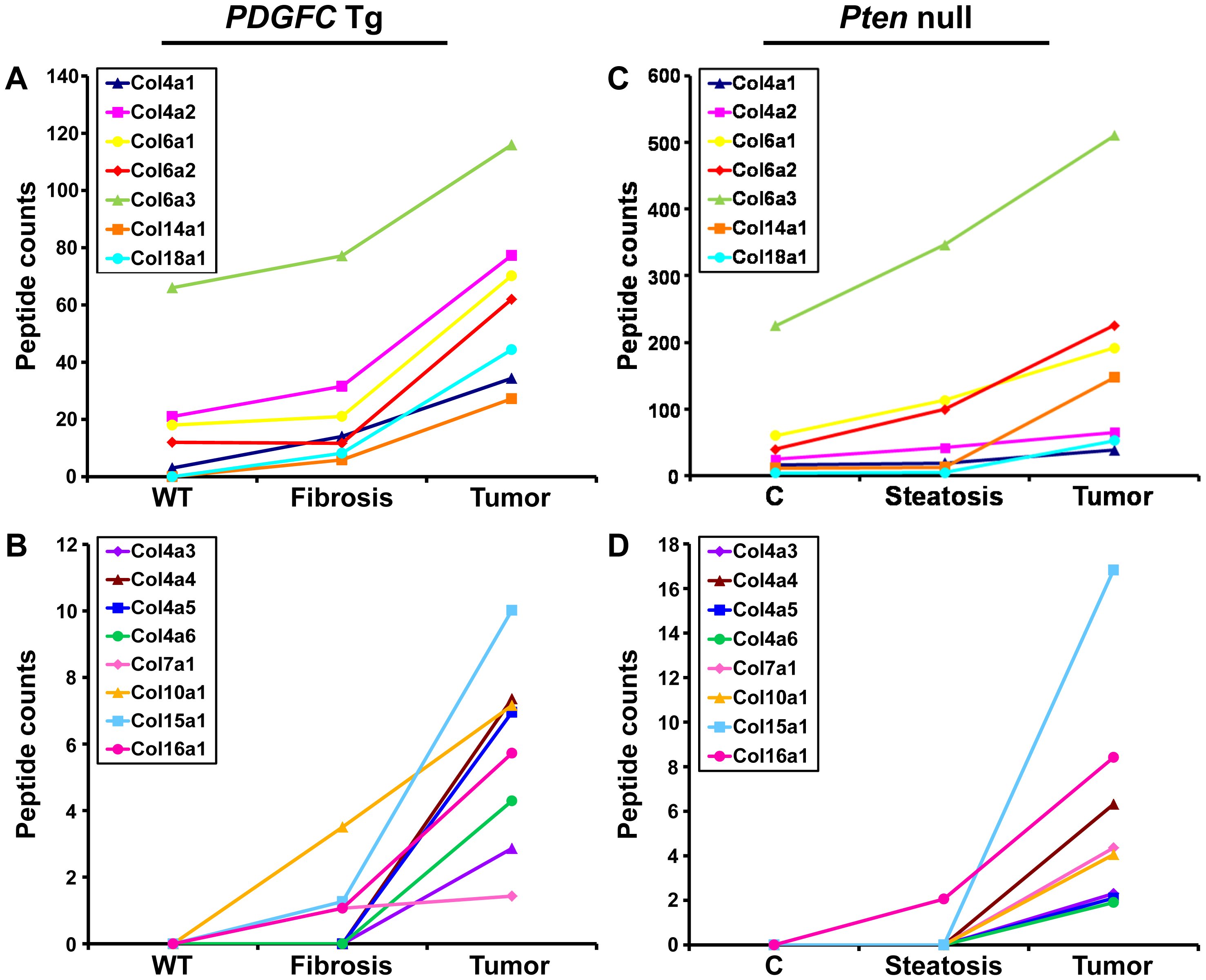 Collagen proteins up-regulated in <i>PDGFC</i> Tg and <i>Pten</i> null tumors.