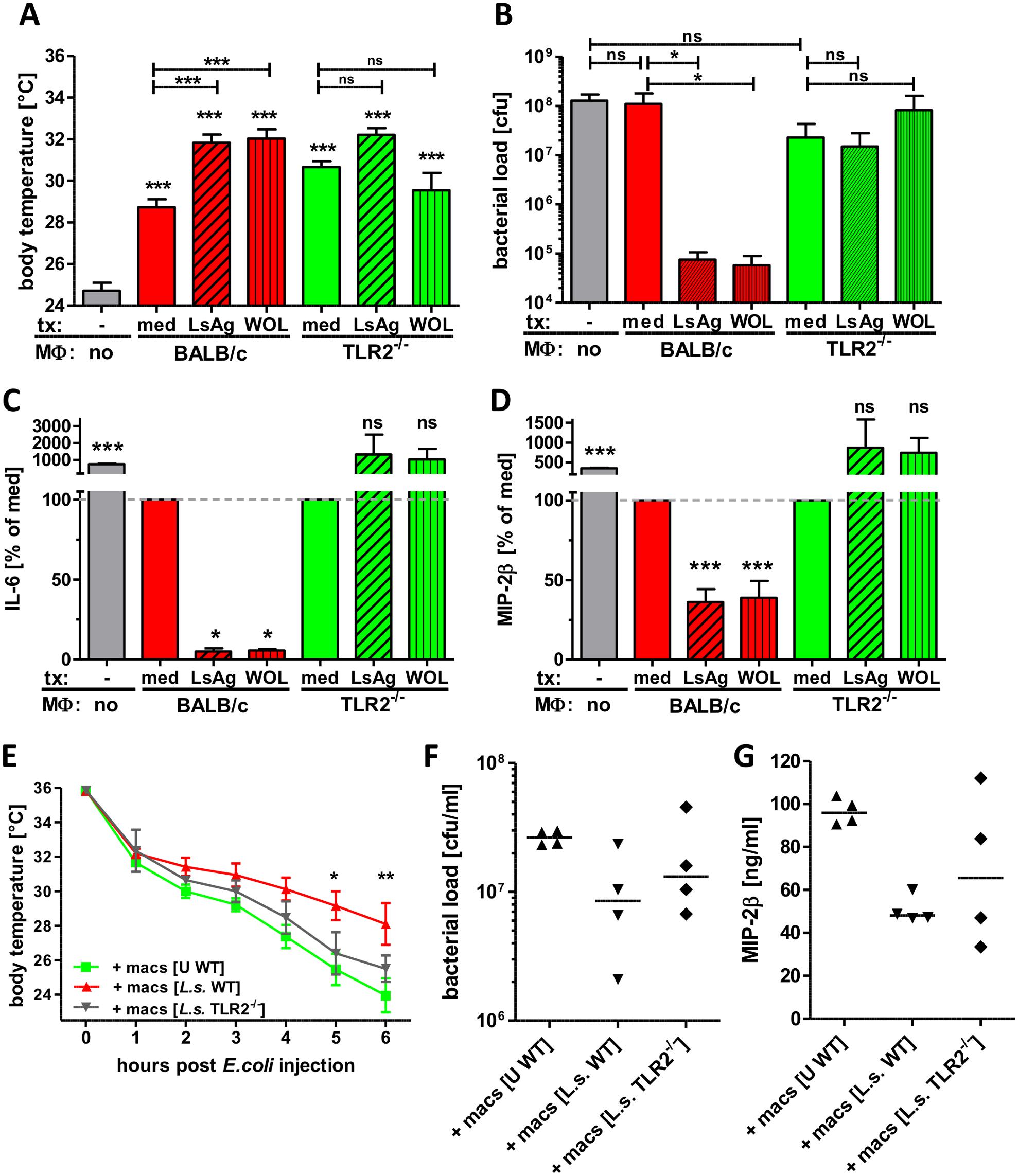 Transfer of primed macrophages improves <i>E. coli</i>-induced sepsis.