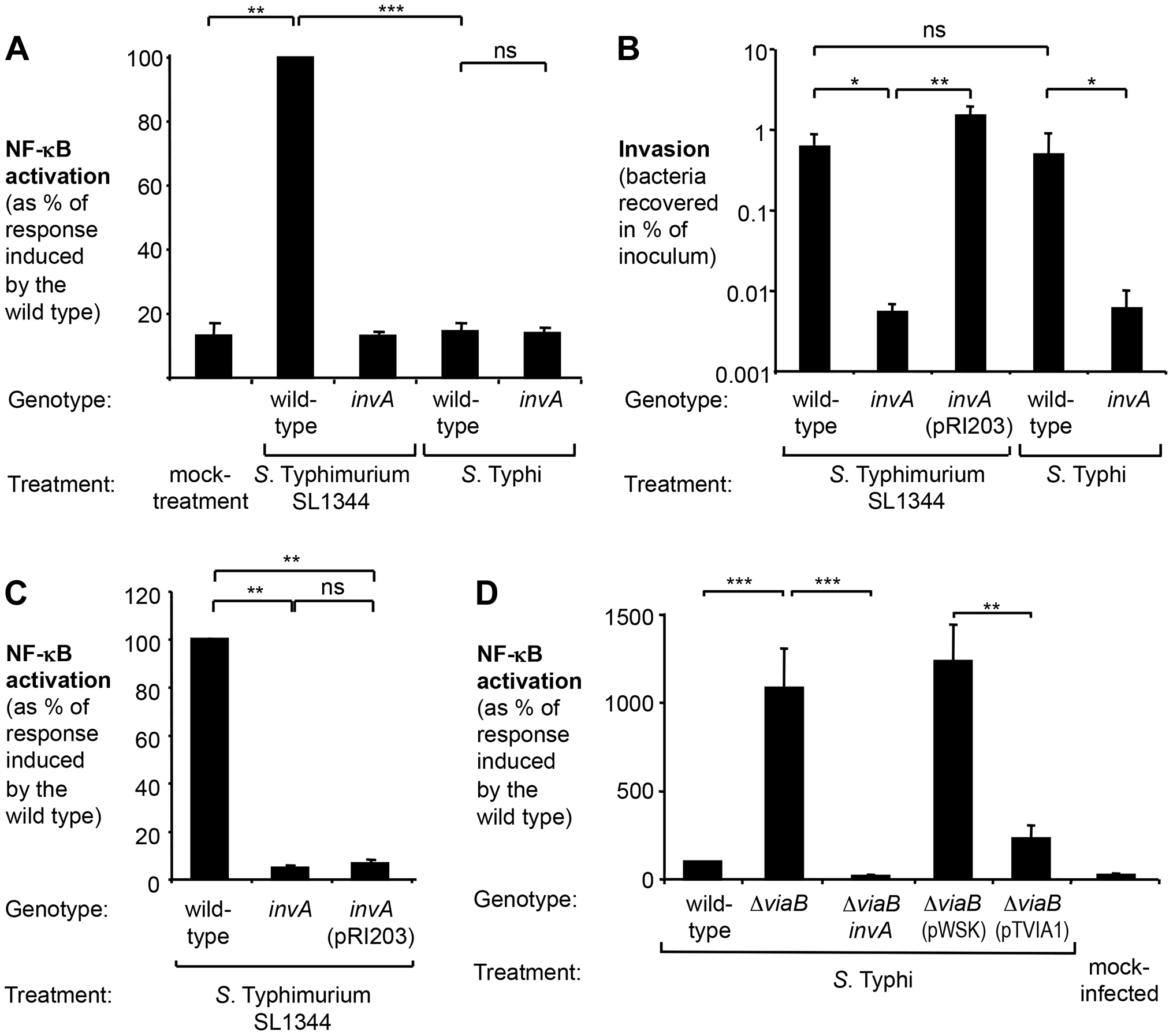 <i>S.</i> Typhi does not elicit inflammatory responses in epithelial cells.