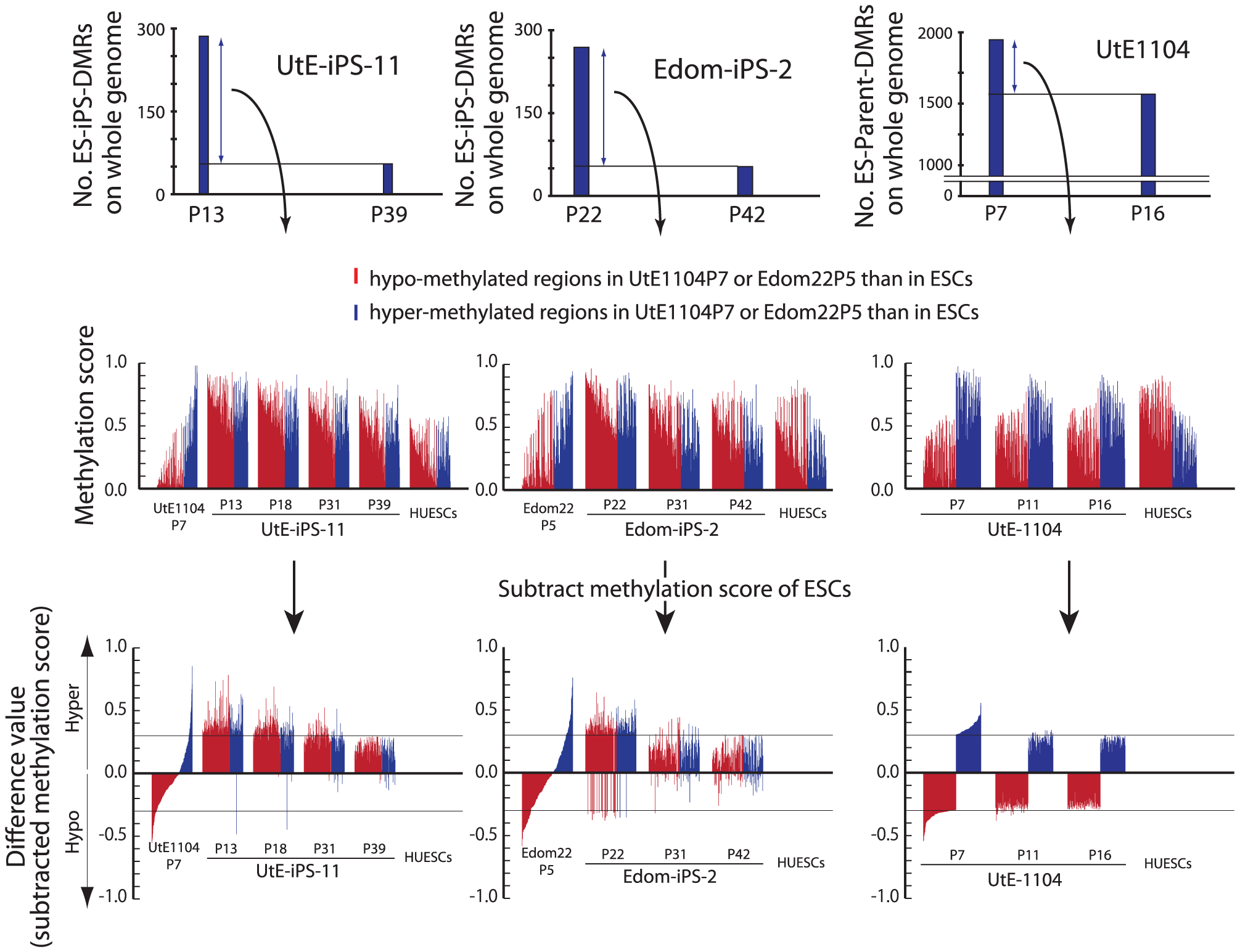 Hyper-methylation in the ES-iPS-DMRs and ES-parent-DMRs.