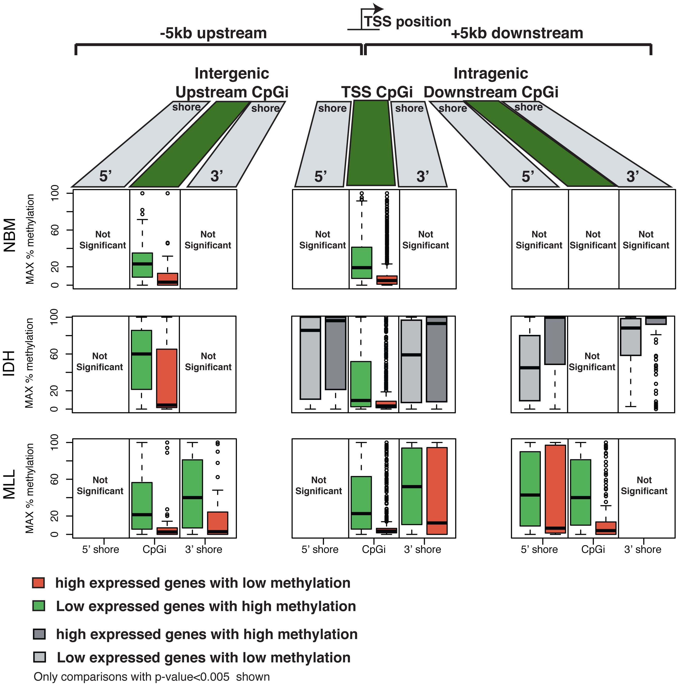 DNA methylation and gene expression relationships display subtype-specific differences.