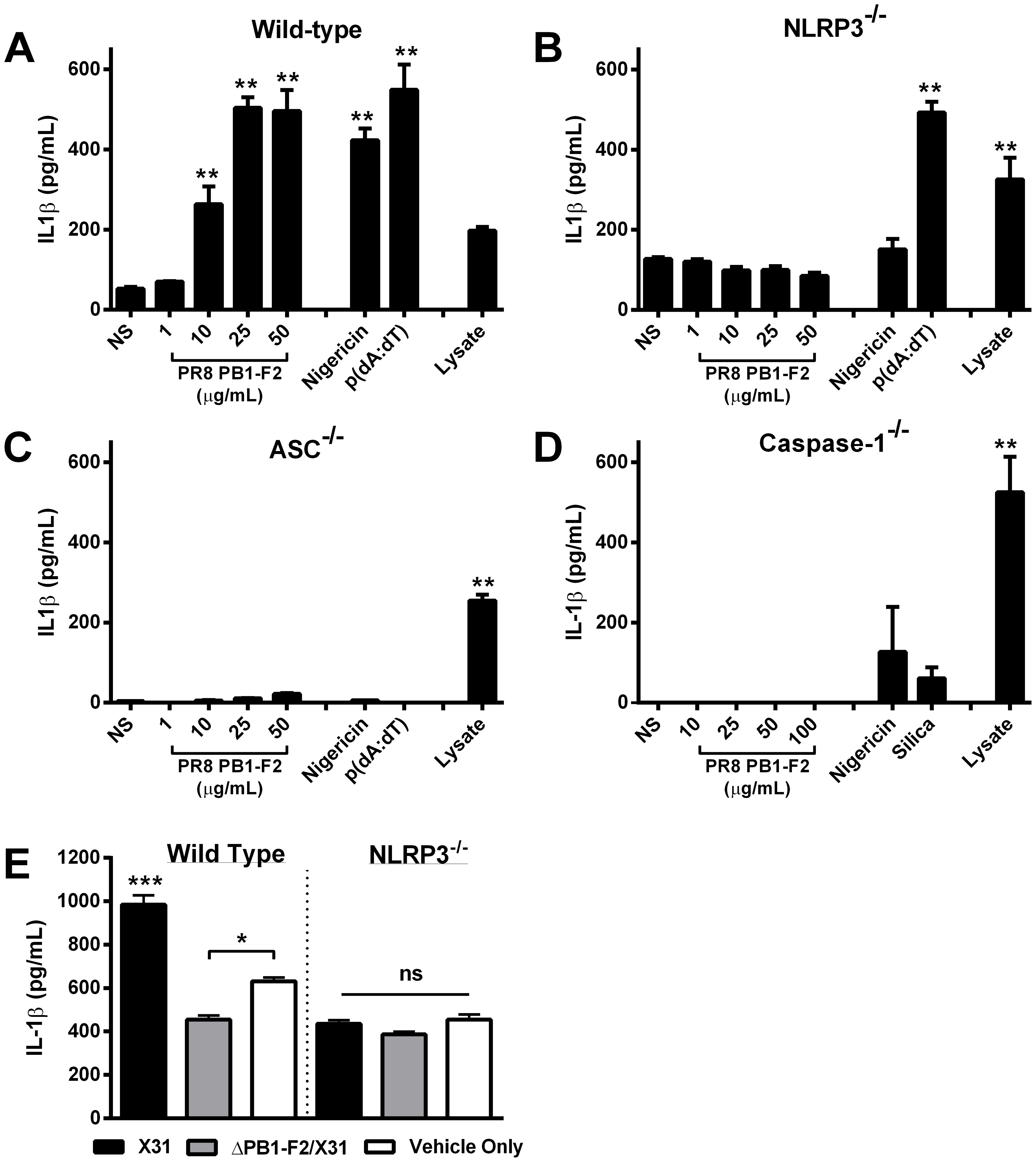 Murine cells unable to express NLRP3-inflammasome complex activators are not stimulated by PR8 PB1-F2 peptide.