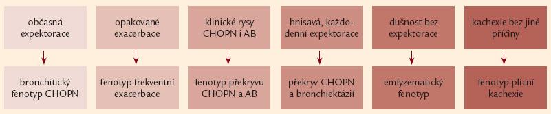 Přehled základních klinických projevů šesti fenotypů chronické obstrukční plicní nemoci (podrobněji viz text a obr. 4).