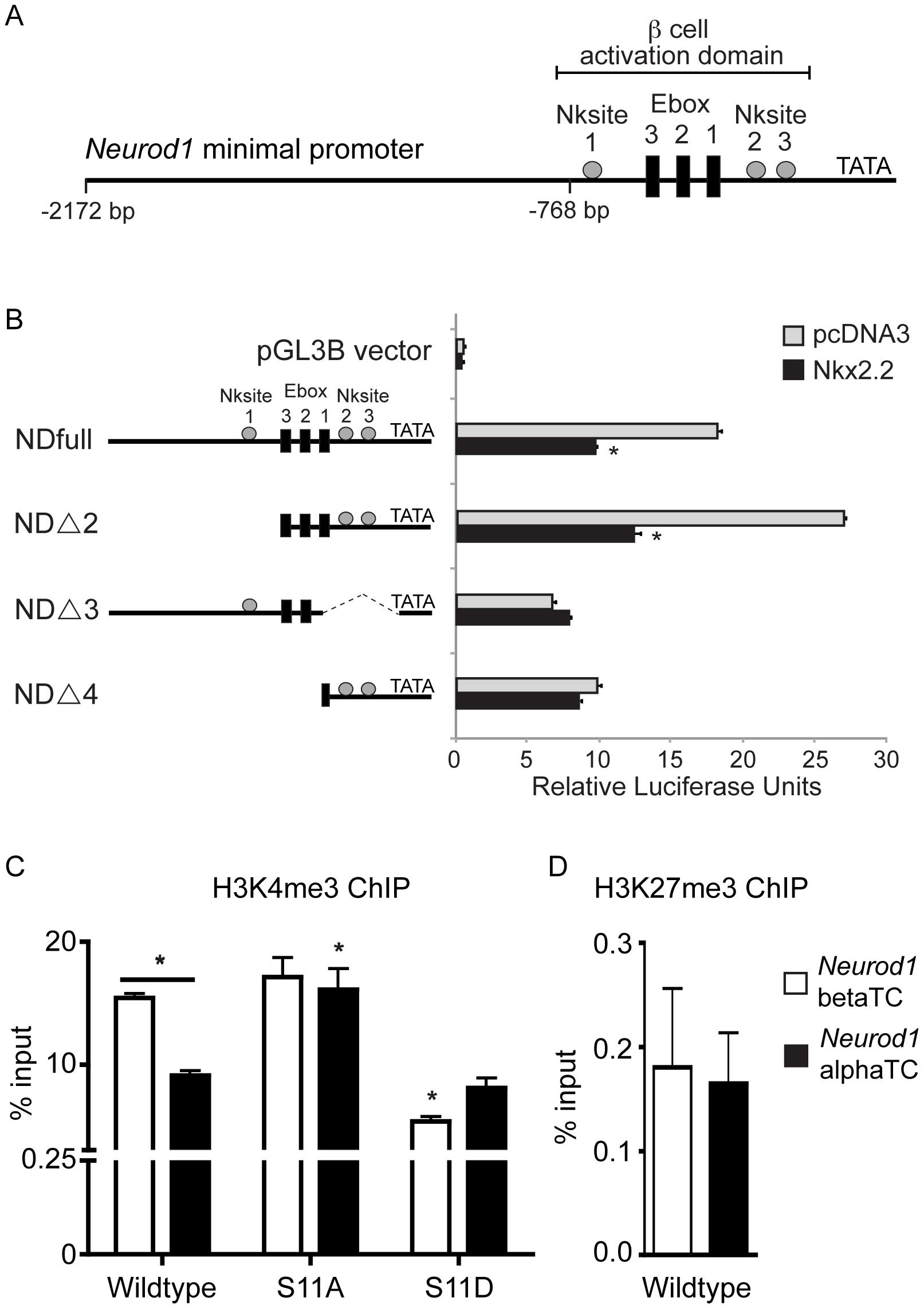 Nkx2.2 represses the <i>Neurod1</i> promoter in alphaTC1 cells.