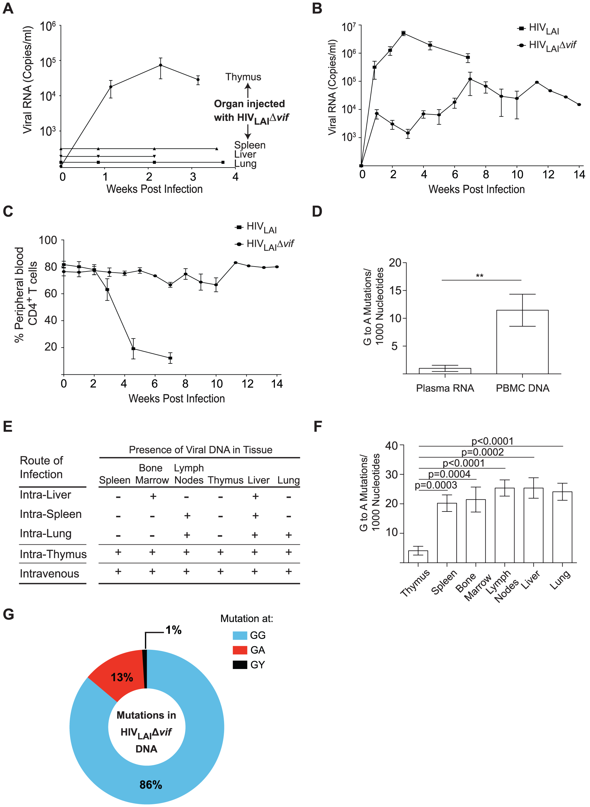 Sustained Vif-independent replication of CXCR4 tropic HIV-1.