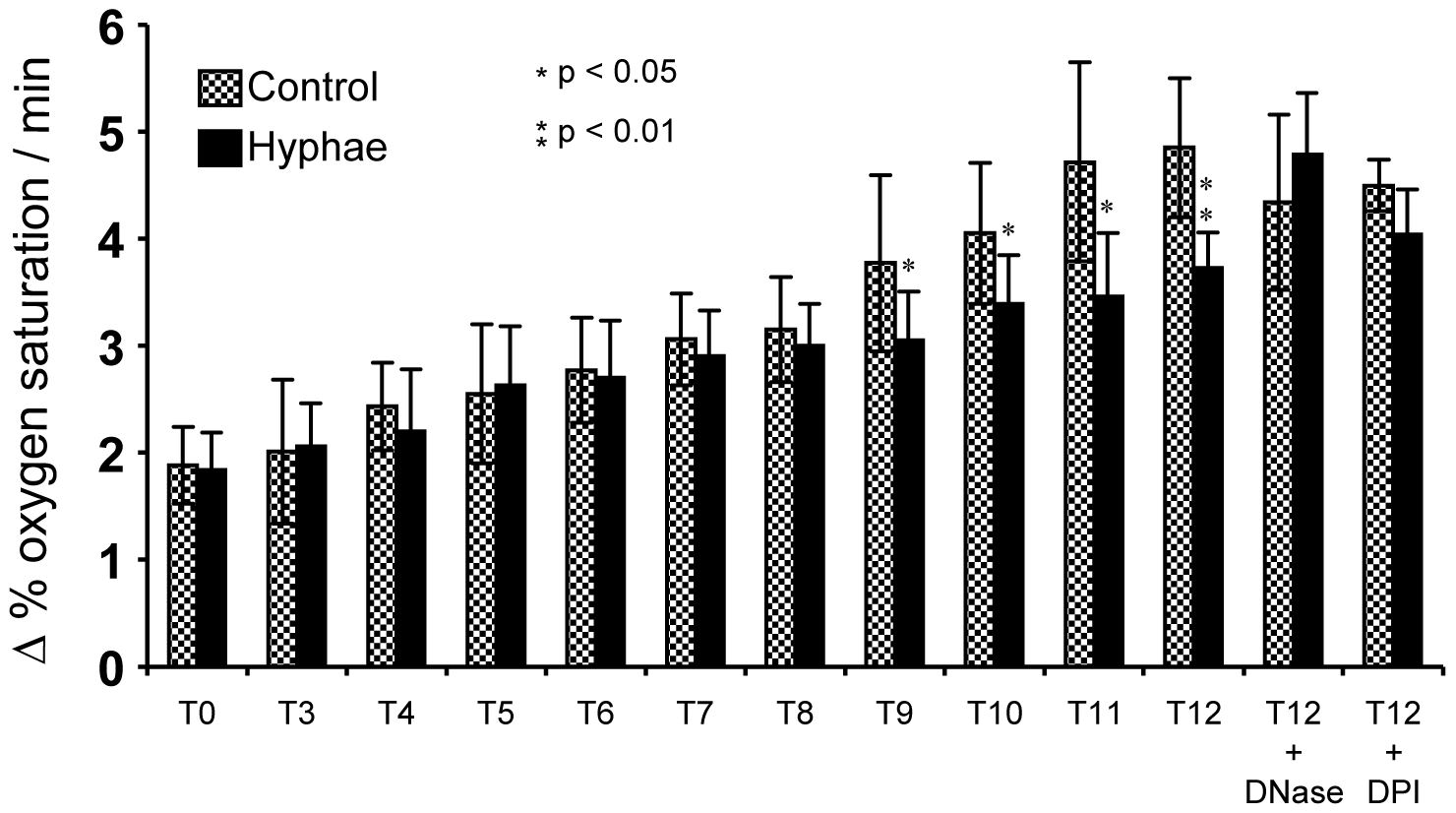 Determination of the atmospheric molecular oxygen consumption of <i>A. fumigatus</i> hyphae after co-incubation with neutrophils for 3 to 12 h.