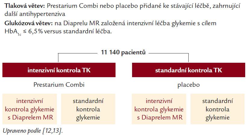 2 × 2 faktoriální randomizovaná studie (2 větve, 4 podskupiny).