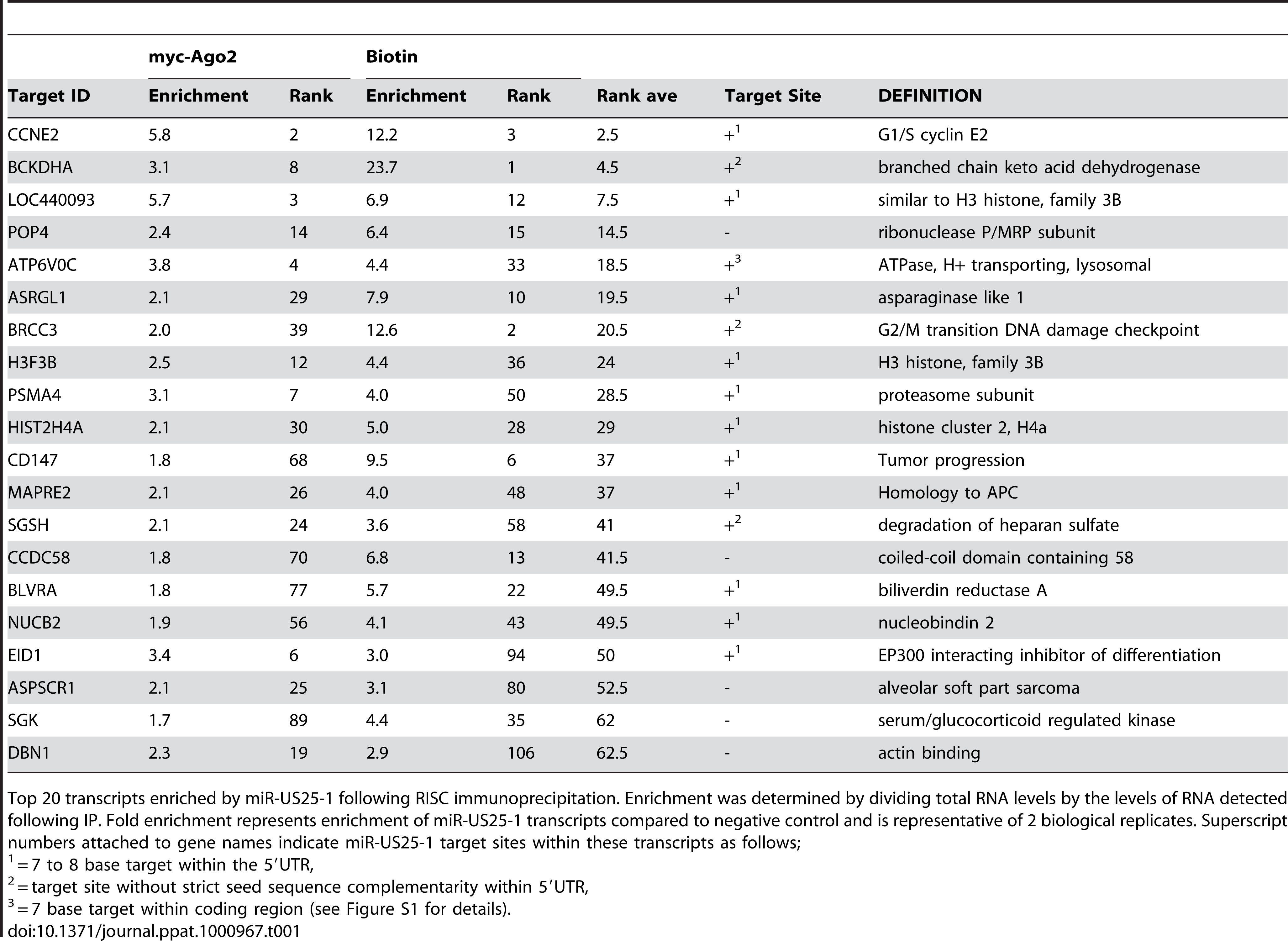 Top 20 ranked cellular targets of miR-US25-1.