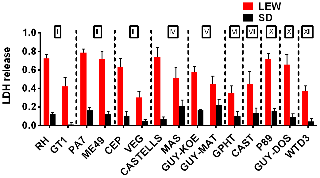 NLRP1 variant-dependent rapid cell death is induced by many different parasite strains.