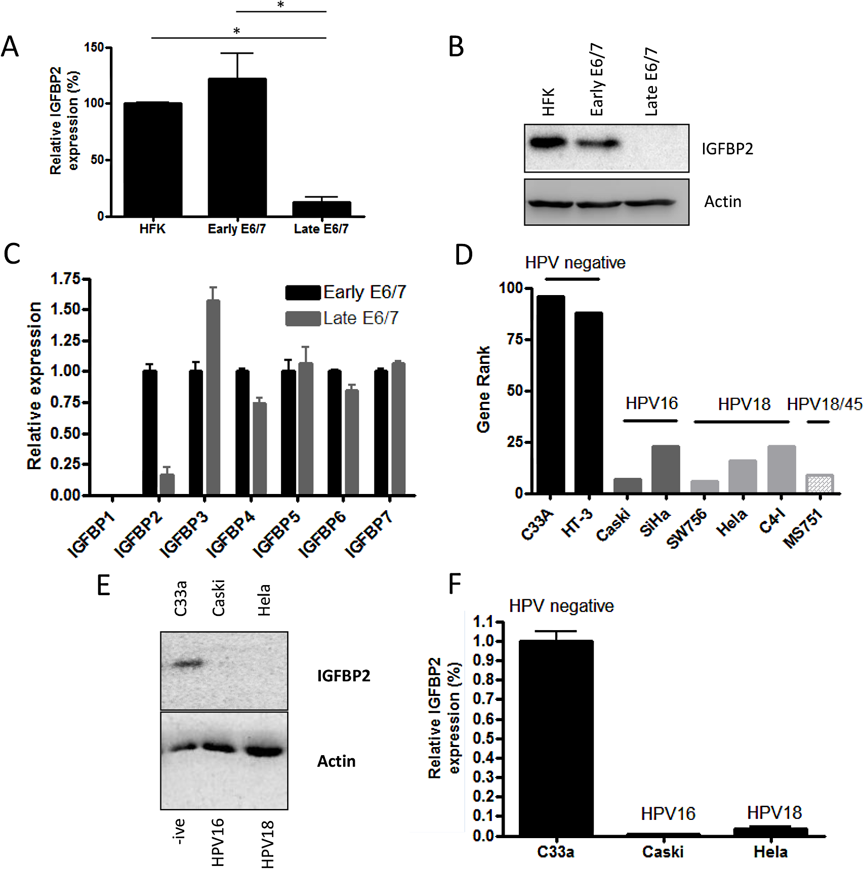 IGFBP2 is transcriptionally repressed in late-passage E6/7-HFKs and HPV positive cervical cancer cell lines.