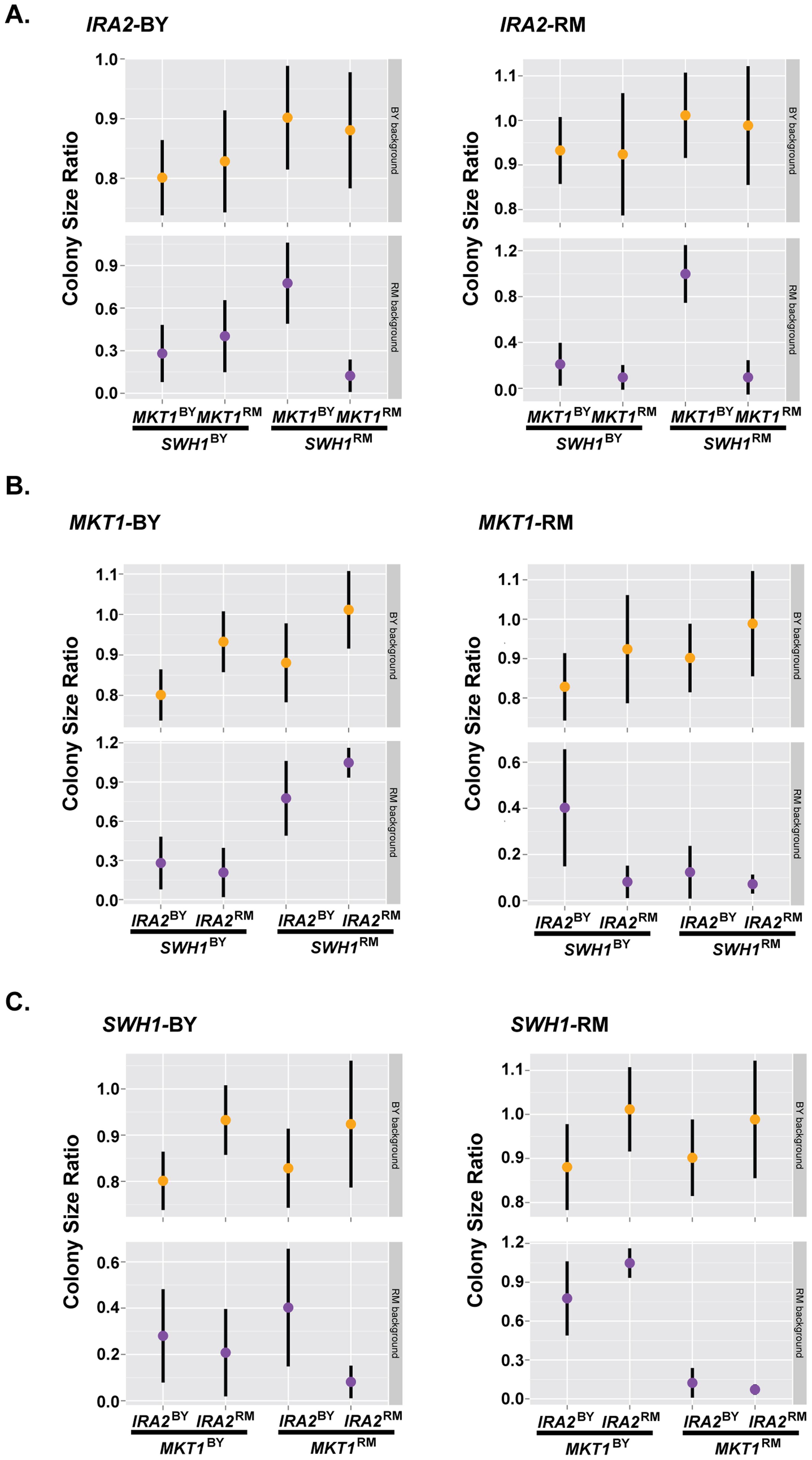 Complex genetic interactions underlie resistance to haloperidol.