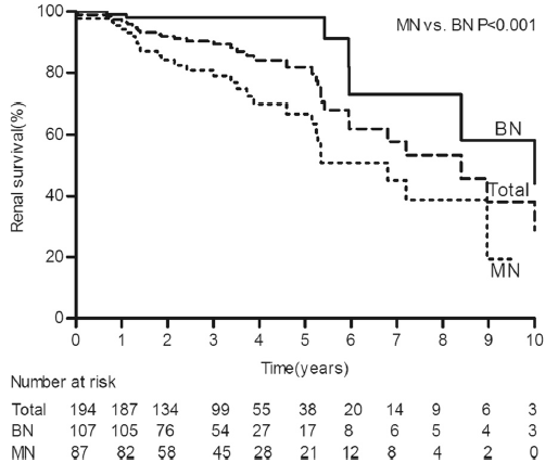 Kaplan-Meier renal survival curves for 194 patients with HN. The 5- and 10-year cumulative renal survival rates after biopsy were 84.5 % and 48.9 %, respectively, for 194 patients with HN. The 5- and 10-year cumulative renal survival rates after biopsy were 98.1 % and 58.3 %, respectively, for the BN group, and 66.8 % and 19.4 %, respectively, for the MN group (log-rank P < 0.001). HN, hypertensive nephrosclerosis; BN, benign nephrosclerosis; MN, malignant nephrosclerosis