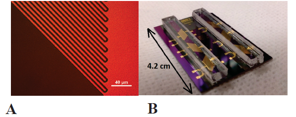 <b>A</b> Gold interdigital electrodes for electrical impedance spectroscopy. <b>B</b> Microfluidic chip with six sensor areas in two microfluidic channels made of SU-8 photoresist with polydimethylsiloxane cover lids.