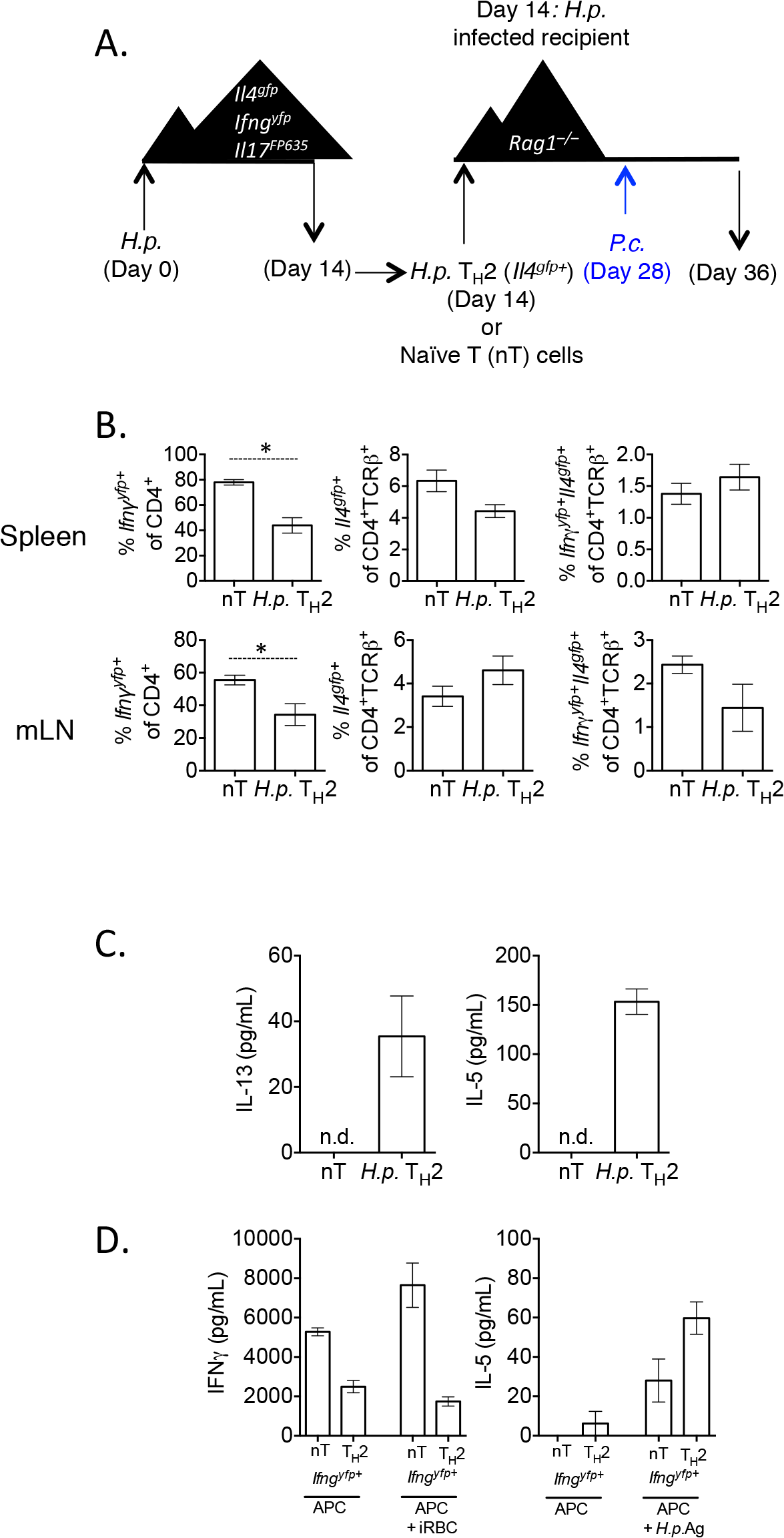 <i>H</i>. <i>polygyrus</i>-induced Th2 cells retain capacity to produce IFNγ during co-infection.