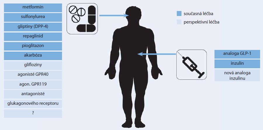 Možnosti farmakologické léčby diabetu.