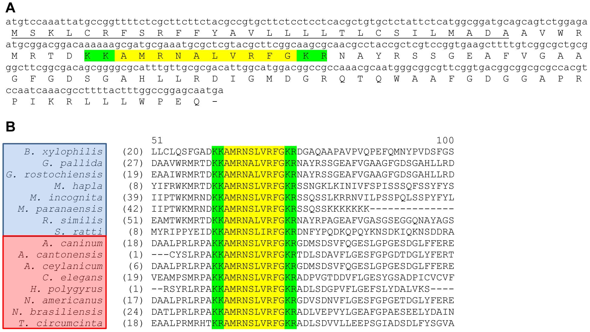 <i>Globodera pallida flp</i>-32 (<i>Gp-flp</i>-32) encodes a single peptide (AMRNALVRFG) and is expressed in at least 16 nematode species.