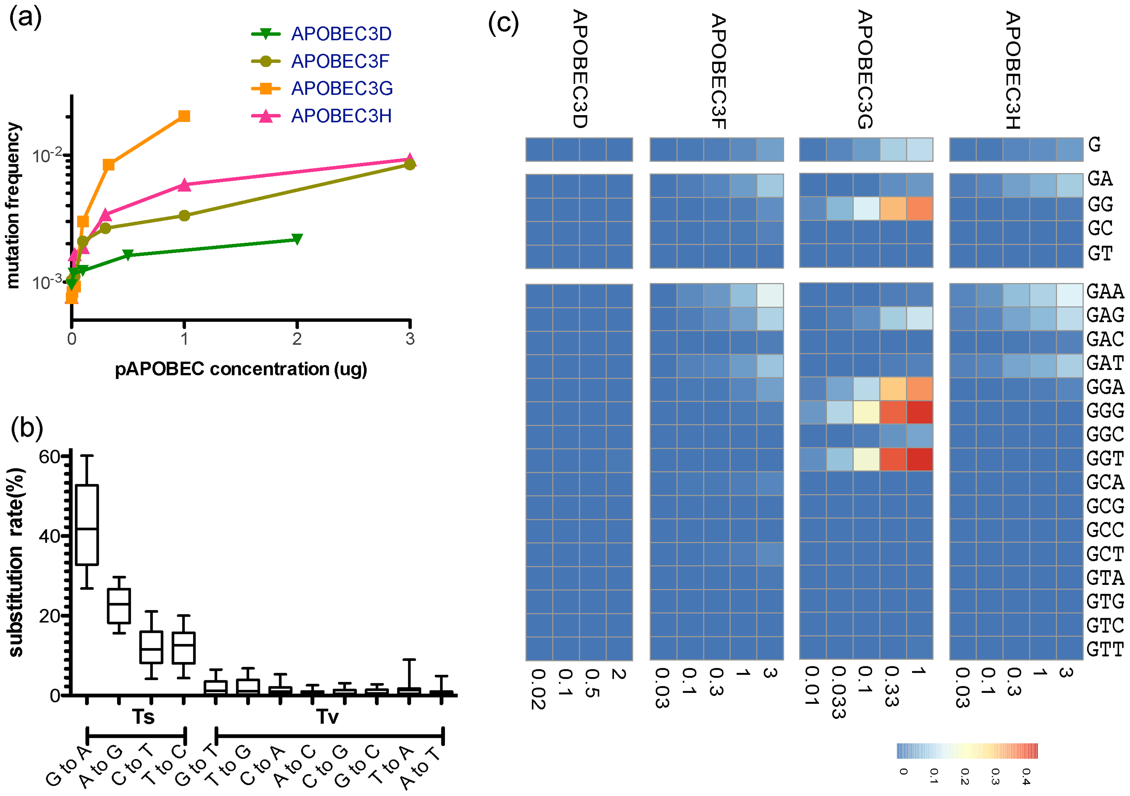 Site-specific editing frequencies in infected cells from single-cycle APOBEC3 titration transfection experiments.