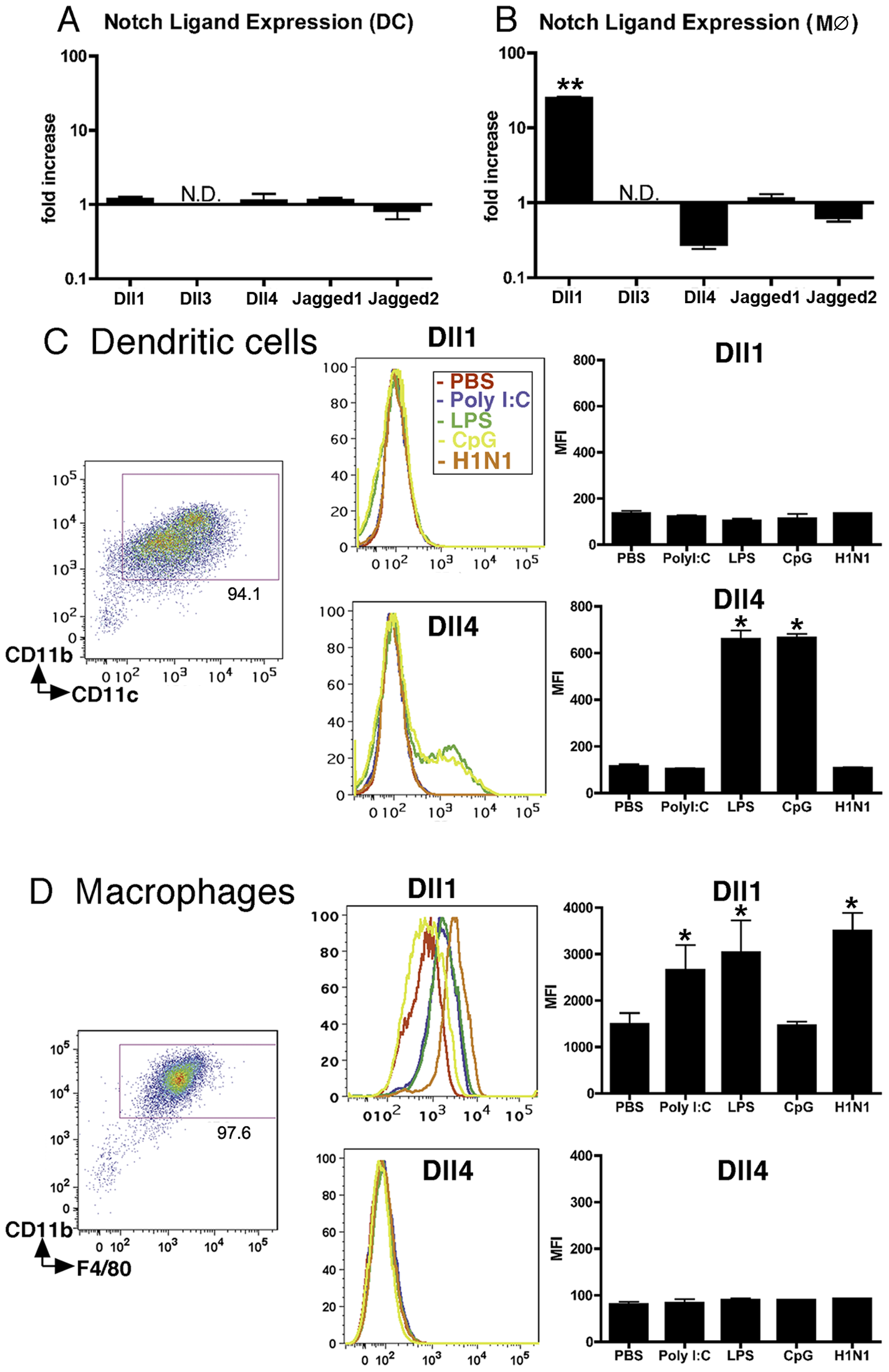 BMDMs, but not BMDCs, exhibit increased expression of Dll1.