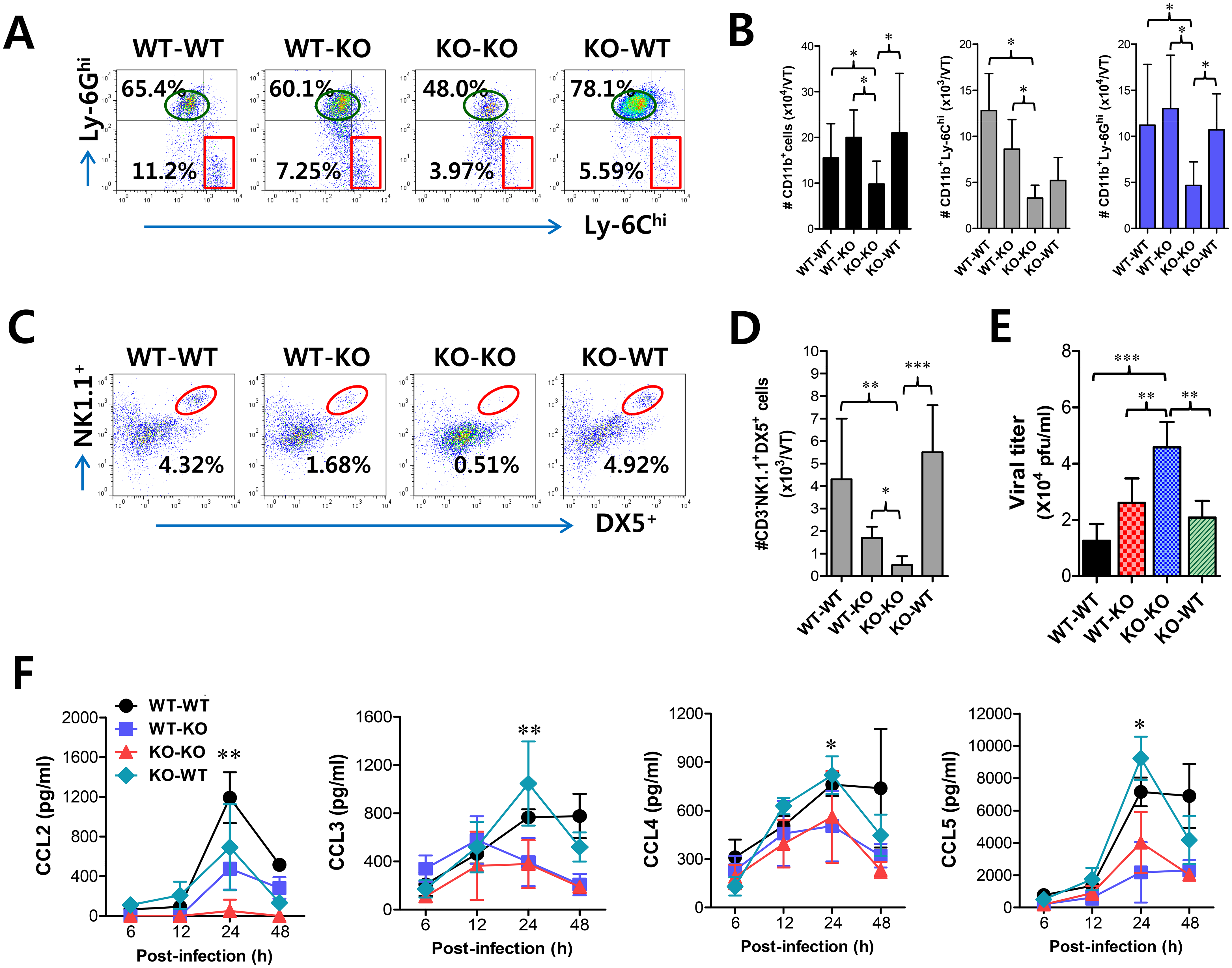 CCL2 produced from infiltrated leukocytes derived from HSC lineage plays a dominant role in mucosal recruitment of CD11b<sup>+</sup>Ly-6C<sup>hi</sup> monocytes.