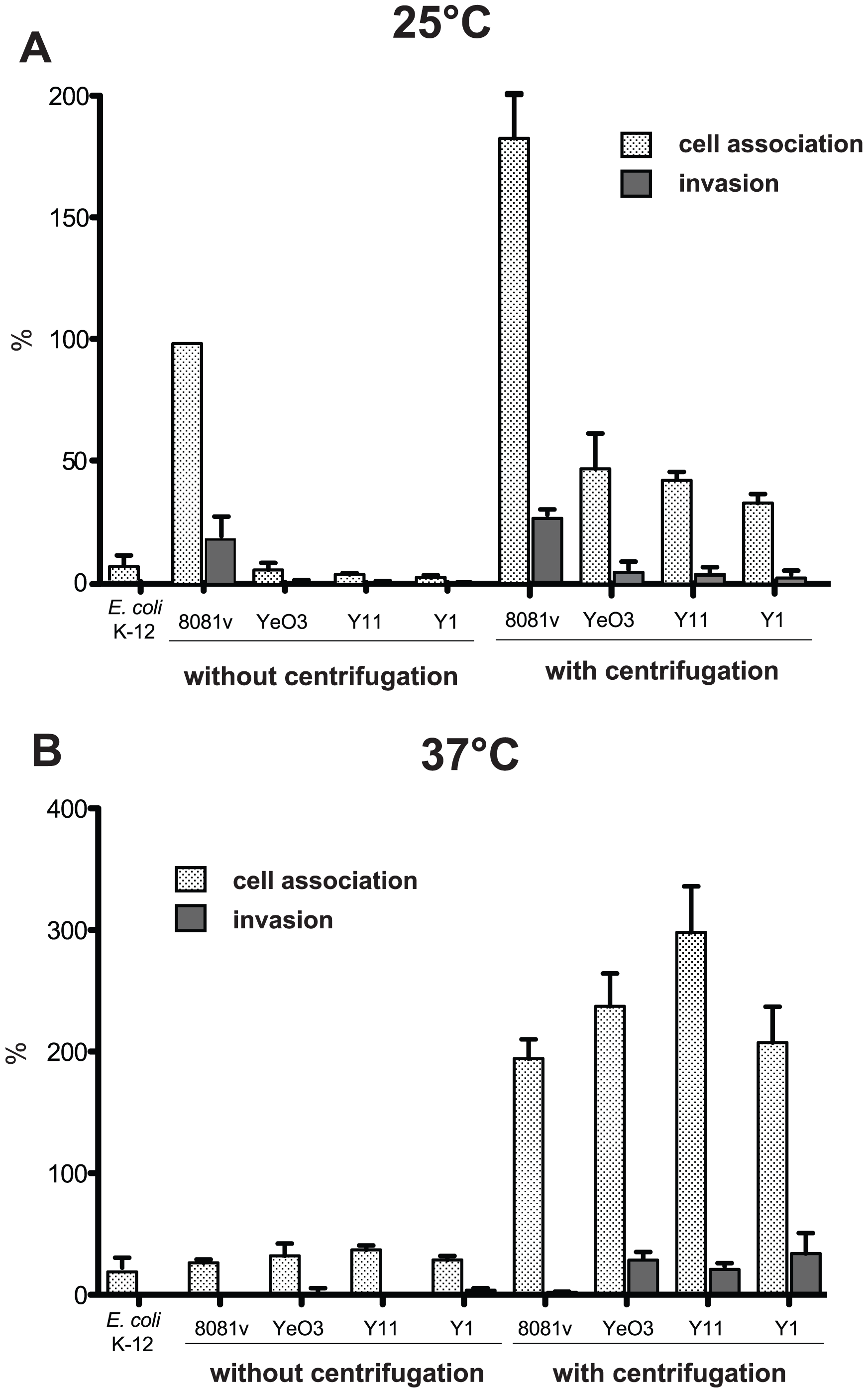 Host cell interaction of <i>Y. enterocolitica</i> O:3 by InvA at 25°C is less efficient due to amotility.