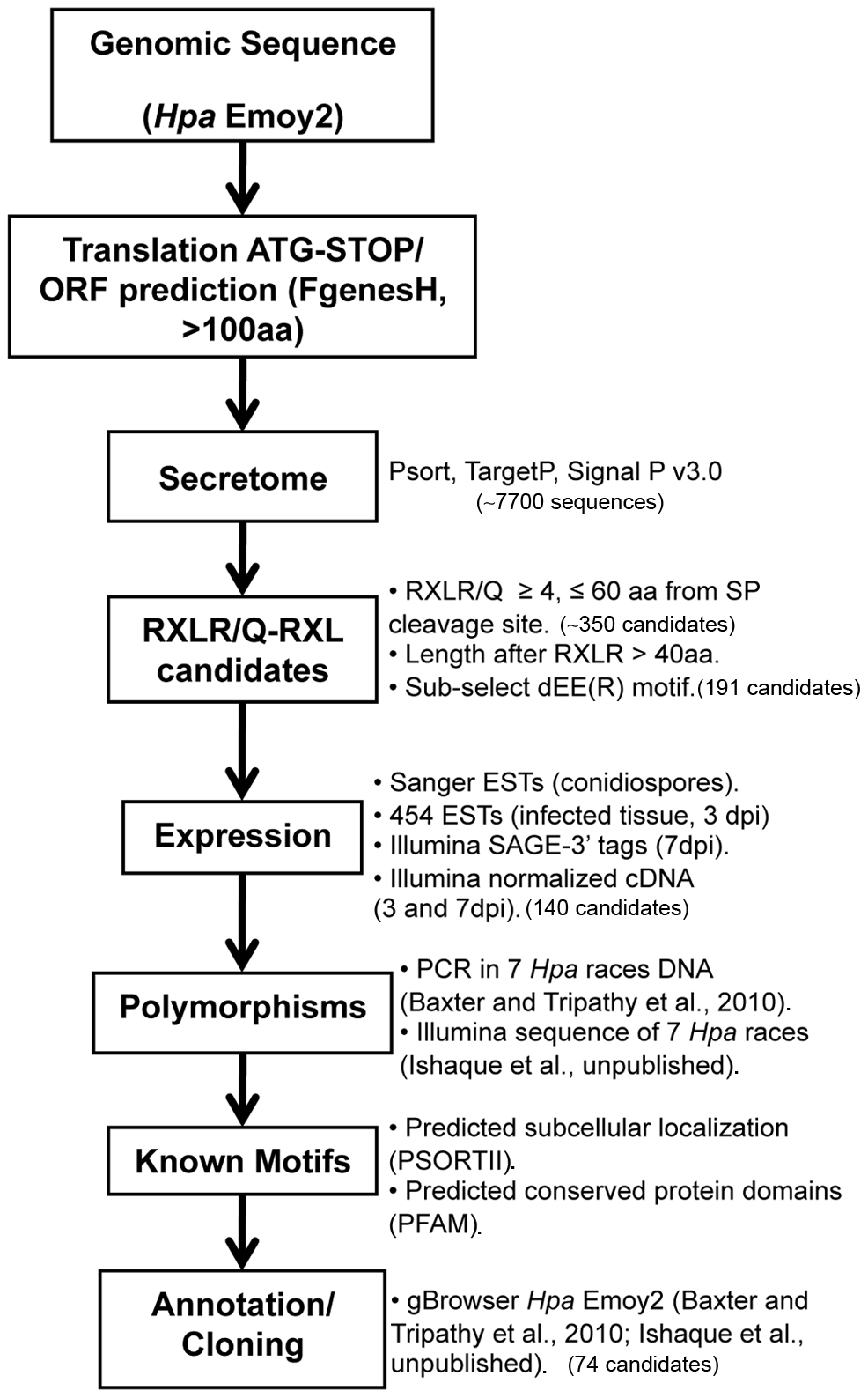 Bioinformatic pipeline used for the identification of <i>Hyaloperonospora arabidopsidis</i> (<i>Hpa</i>) HaRxLs.