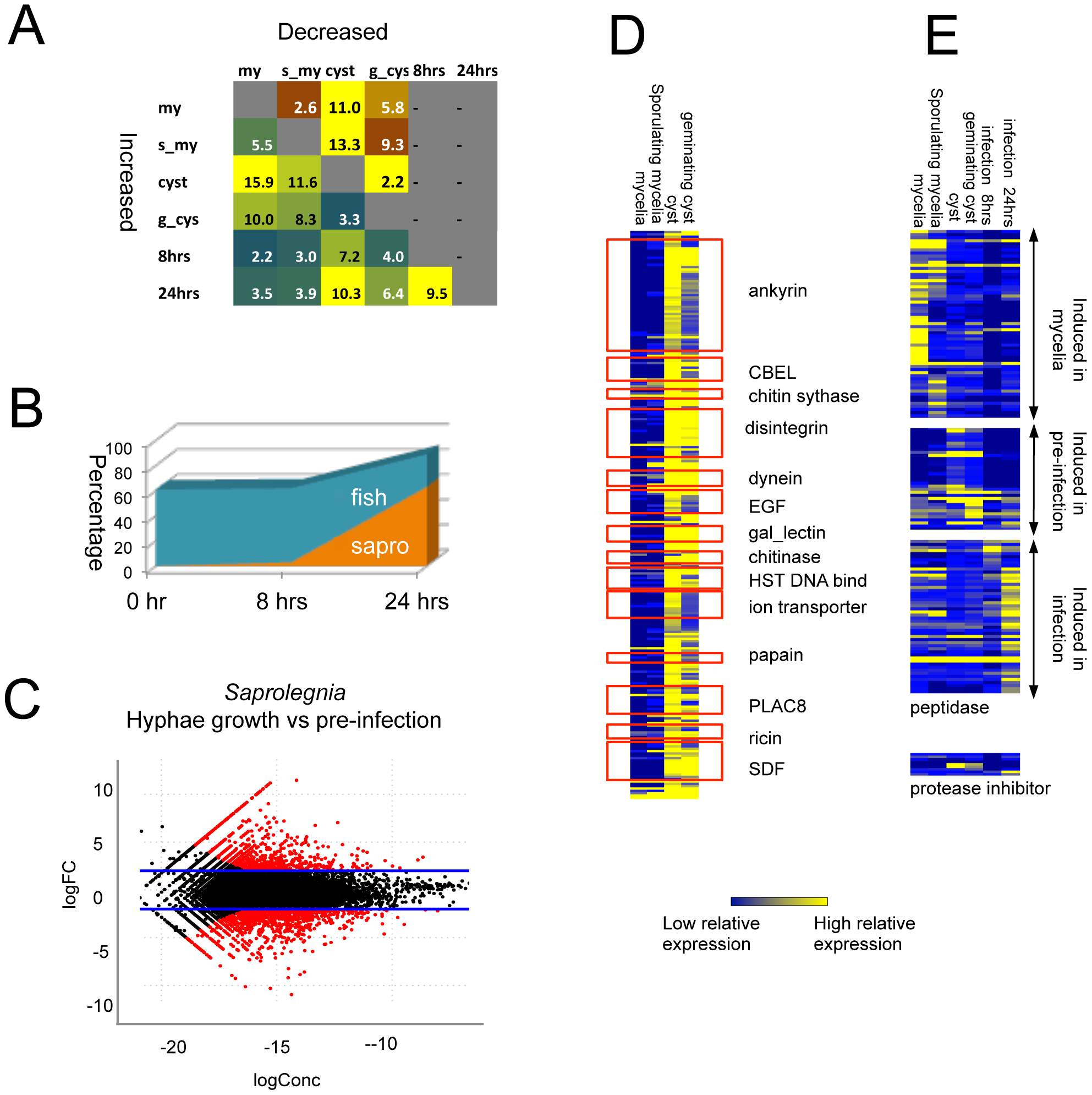 Differentially expressed genes detected by RNA-Seq.