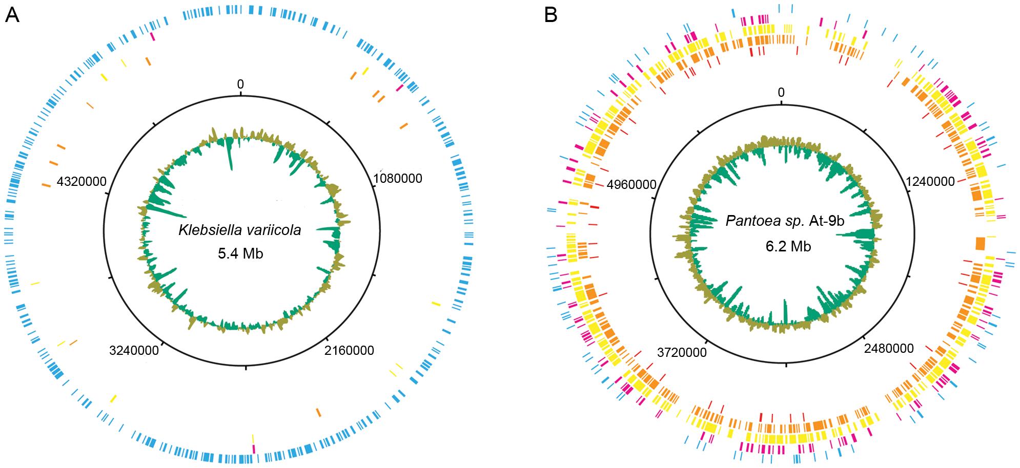 Leaf-cutter ant fungus garden metagenome recruitment analysis.