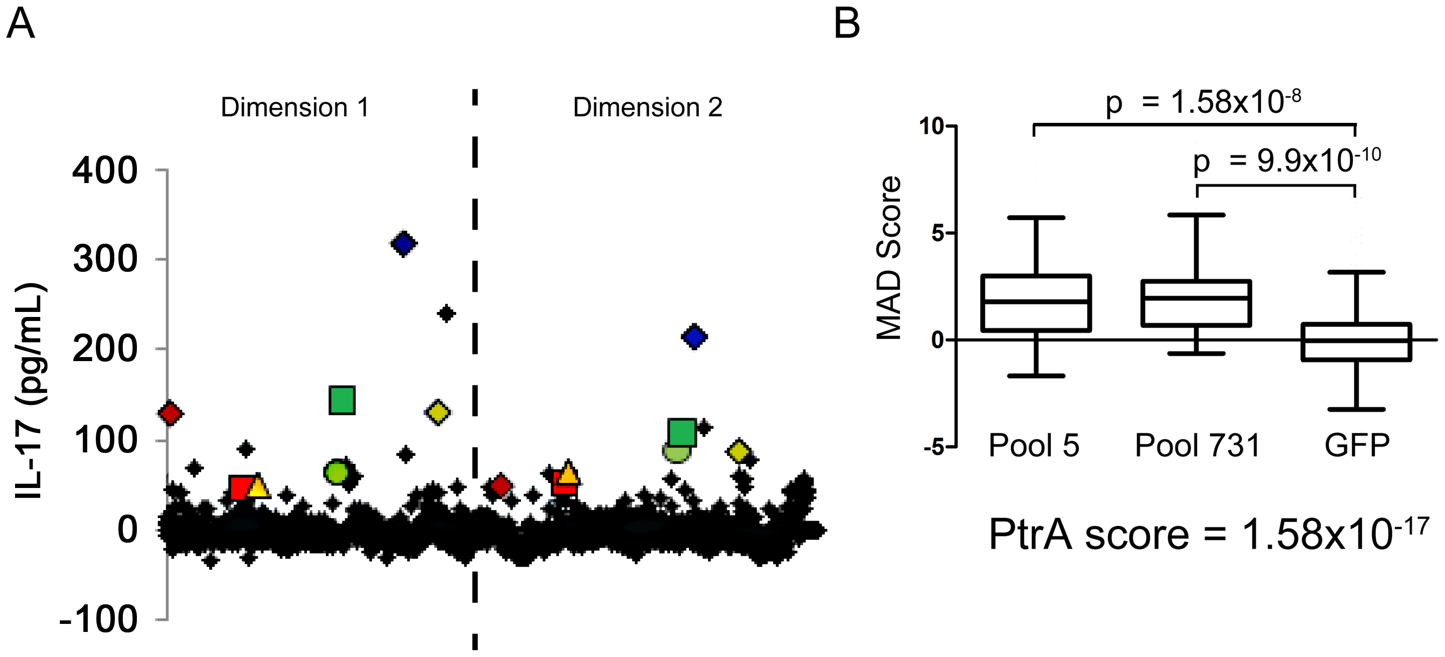 Identification of antigens recognized by human T<sub>H</sub>17 cells.
