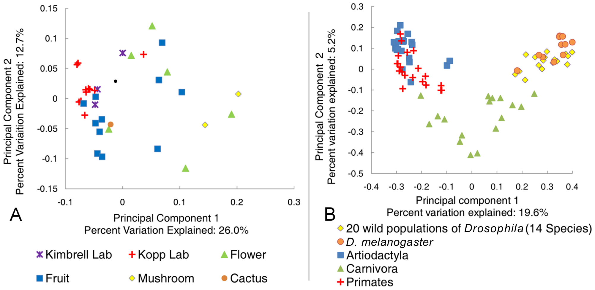 Principle component analysis of the natural <i>Drosophila</i> microbiome.