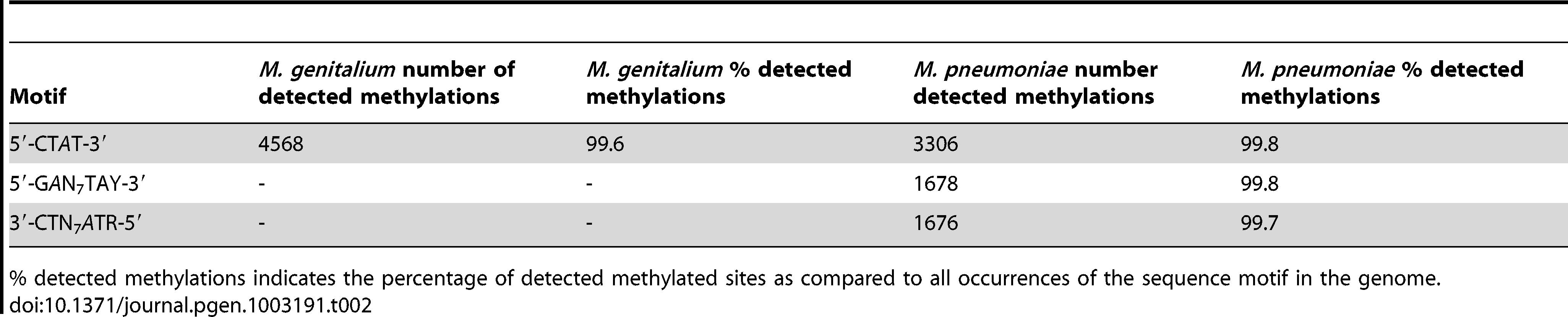 Summary of discovered methylation motifs in <i>M. genitalium</i> and <i>M.pneumoniae</i>.